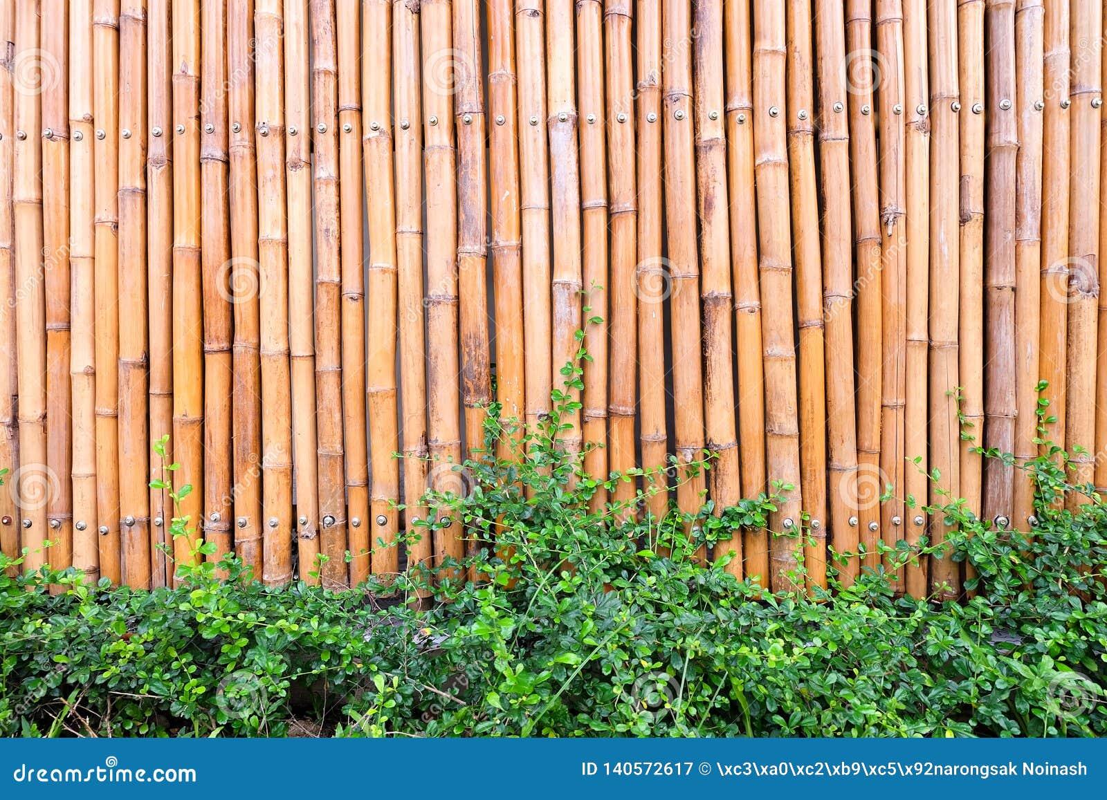Τοίχος φιαγμένος από εκλεκτής ποιότητας φράκτη μπαμπού