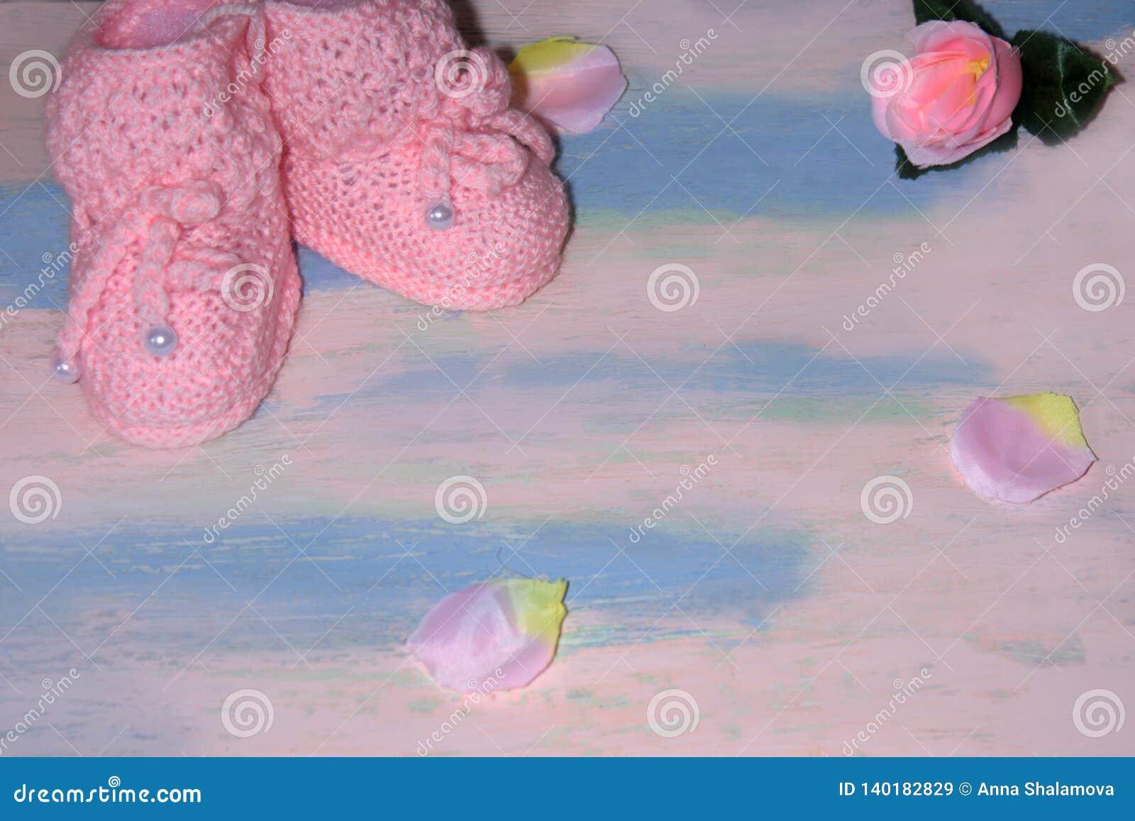 Το ροζ έπλεξε τις λείες παπουτσιών μωρών σε έναν ρόδινος-μπλε ξύλινο πίνακα με με τα ροδαλά πέταλα Νεογέννητη έννοια ανακοίνωσης