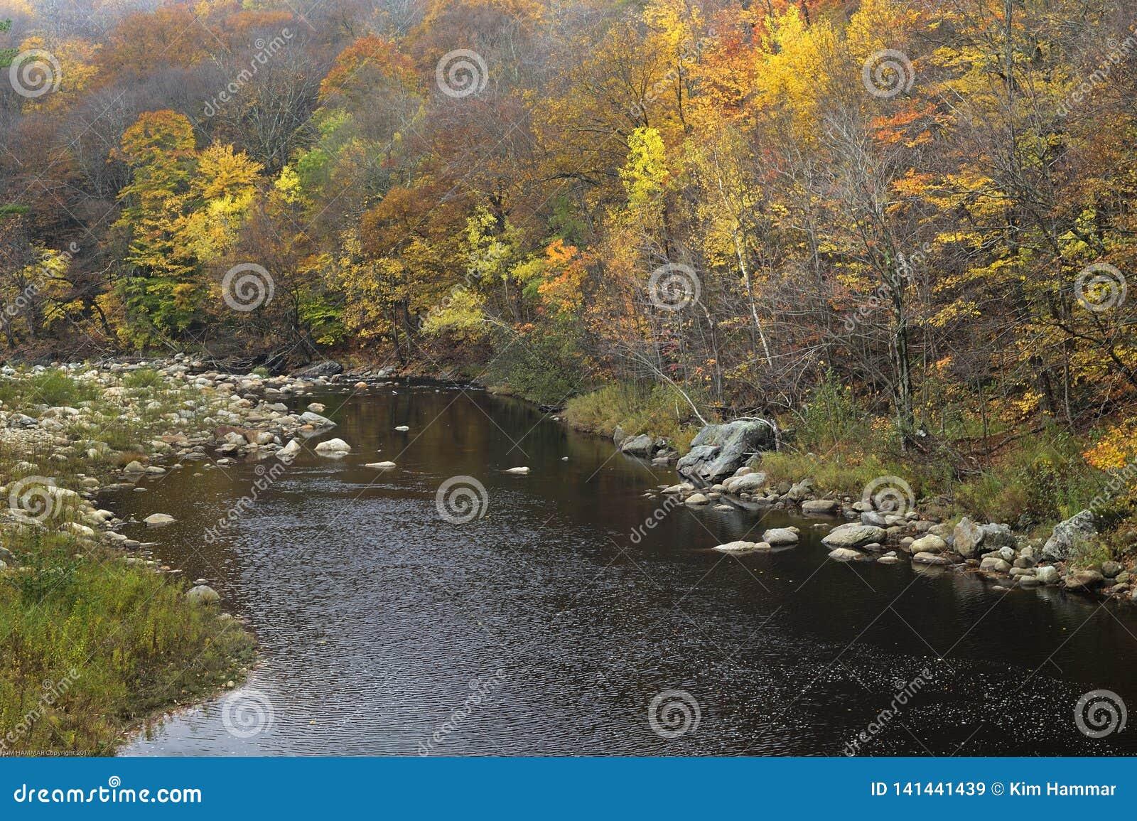 Το φύλλωμα πτώσης λαμπρύνει την ακτή ποταμών του Κοννέκτικατ στο Βερμόντ, ΗΠΑ