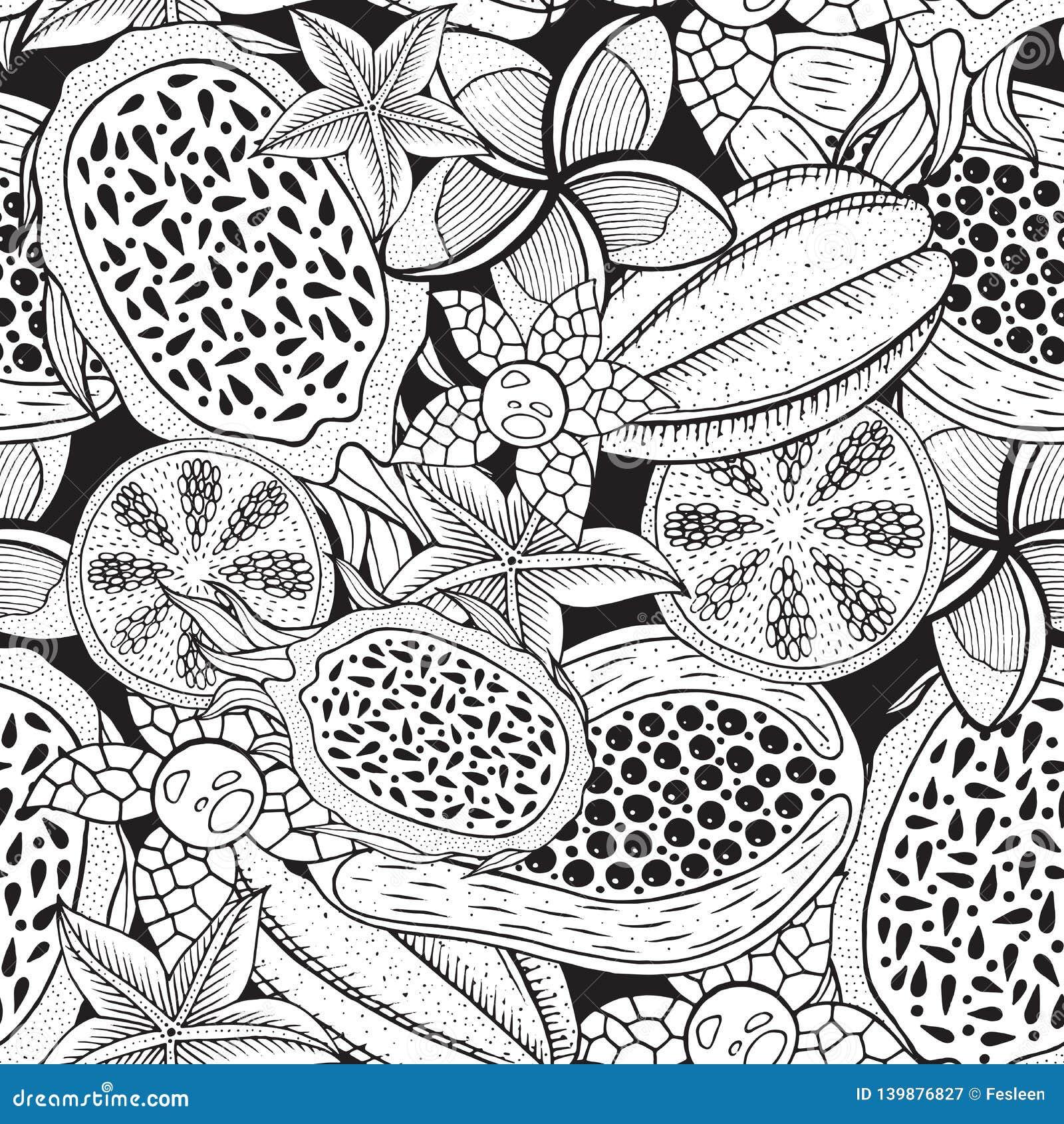 Τροπικά φρούτα - άνευ ραφής σχέδιο για το χρωματισμό του βιβλίου Συρμένη χέρι απεικόνιση μελανιού αφηρημένο γεωμετρικό διάνυσμα α