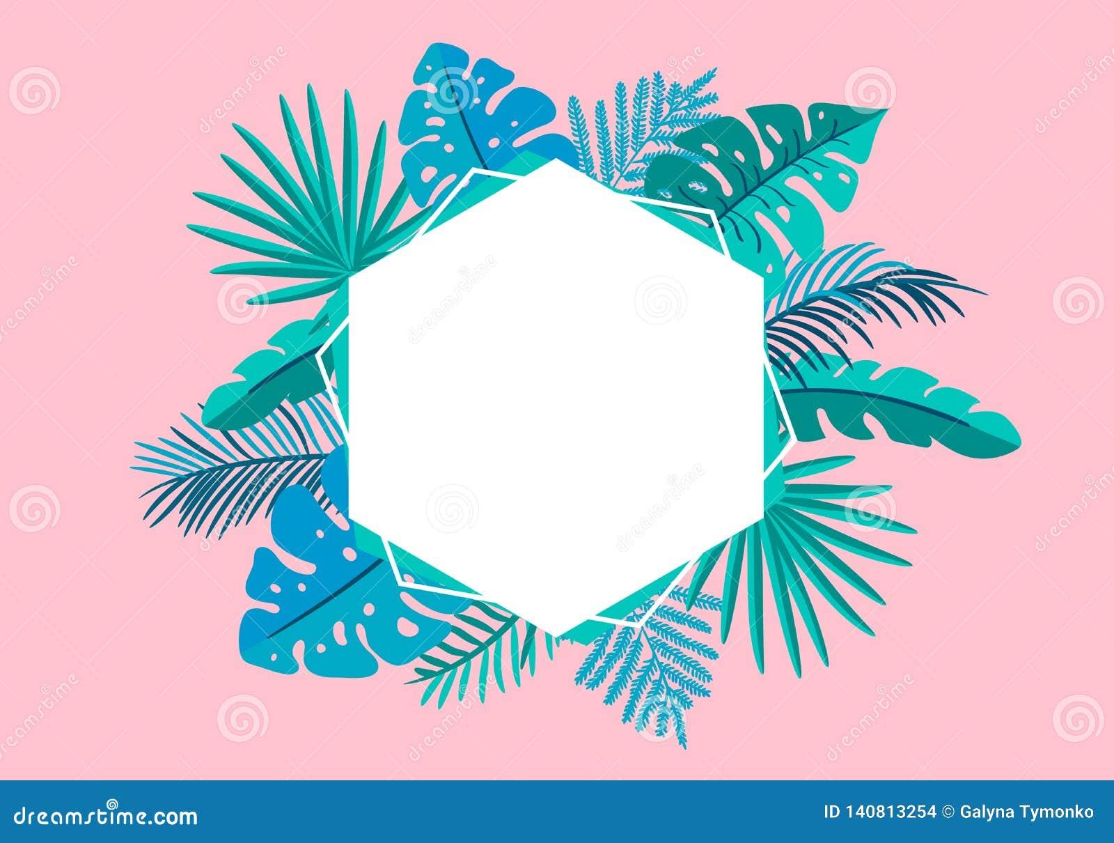 Φοίνικας φύλλων θερινών διανυσματικός floral πλαισίων τροπικός με τη θέση για το κείμενο στοιχεία σχεδίου χρώματος για την τυπωμέ