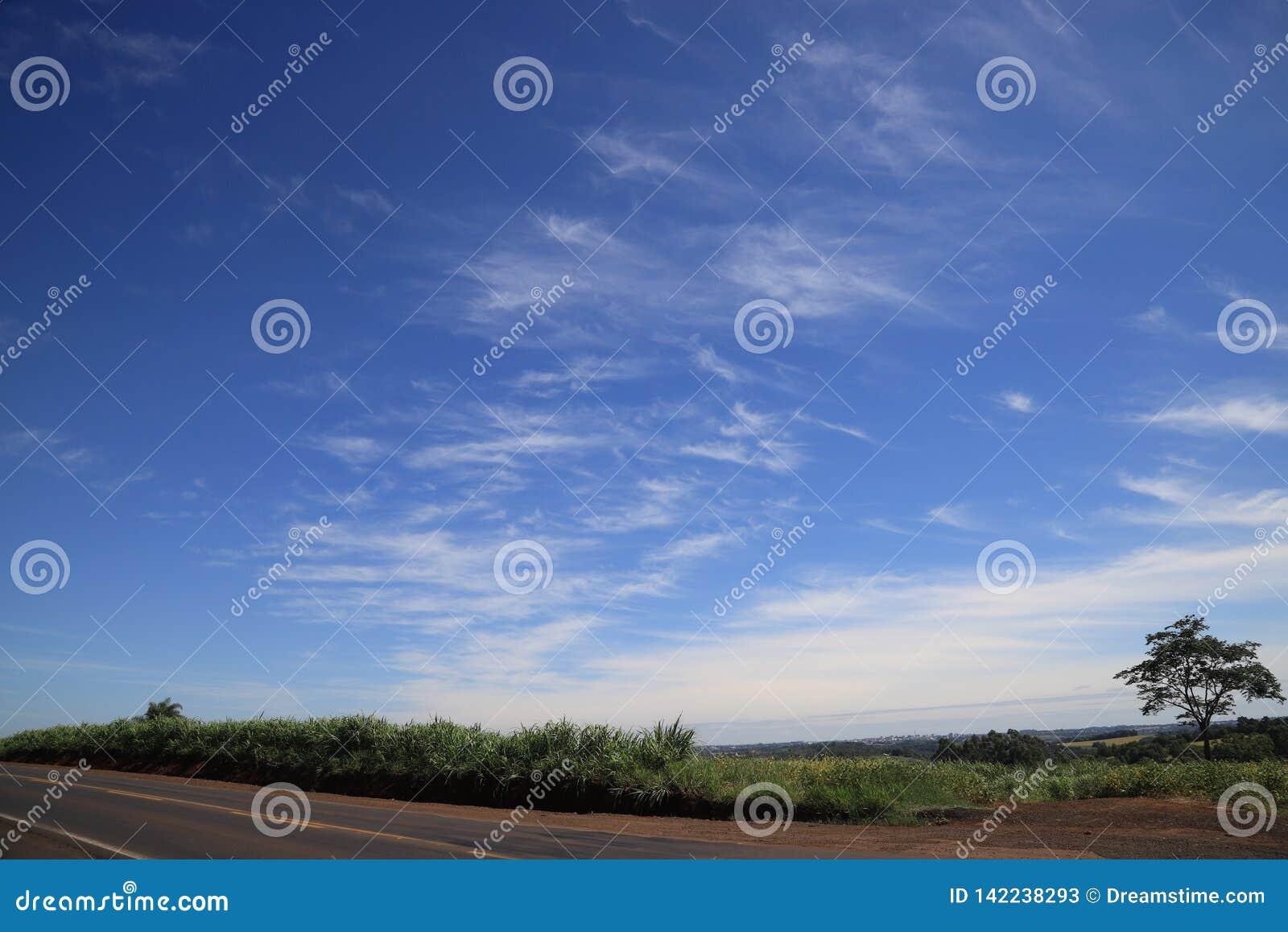 Χρώματα της Βραζιλίας, γκρίζος, πράσινος και όμορφου ενός μπλε και άσπρος στον ουρανό