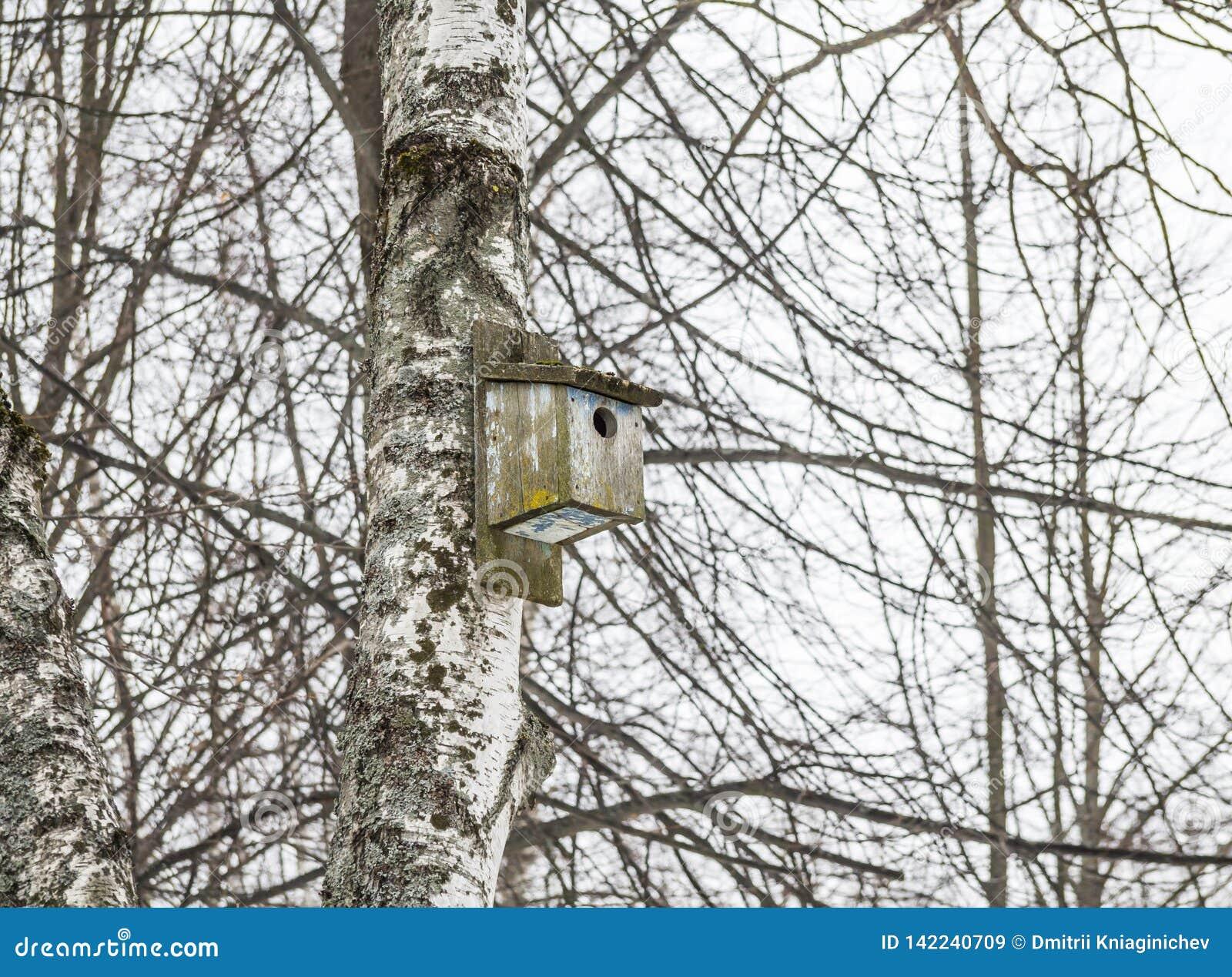 Παλαιό ξύλινο birdhouse σε ένα δέντρο Στο υπόβαθρο των κλάδων