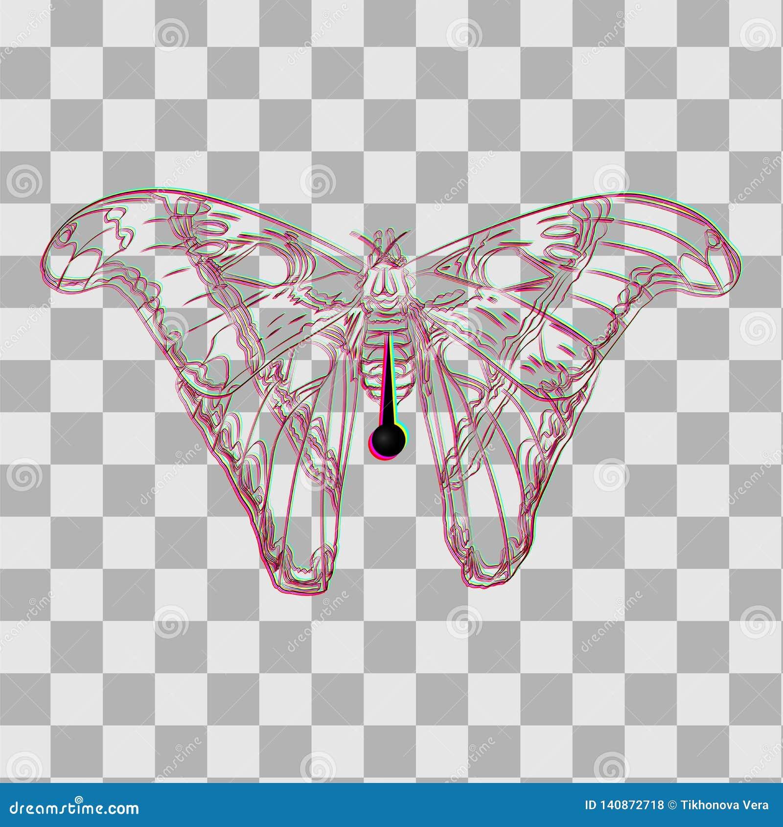 Πεταλούδα σε μια καρφίτσα για τους συλλέκτες