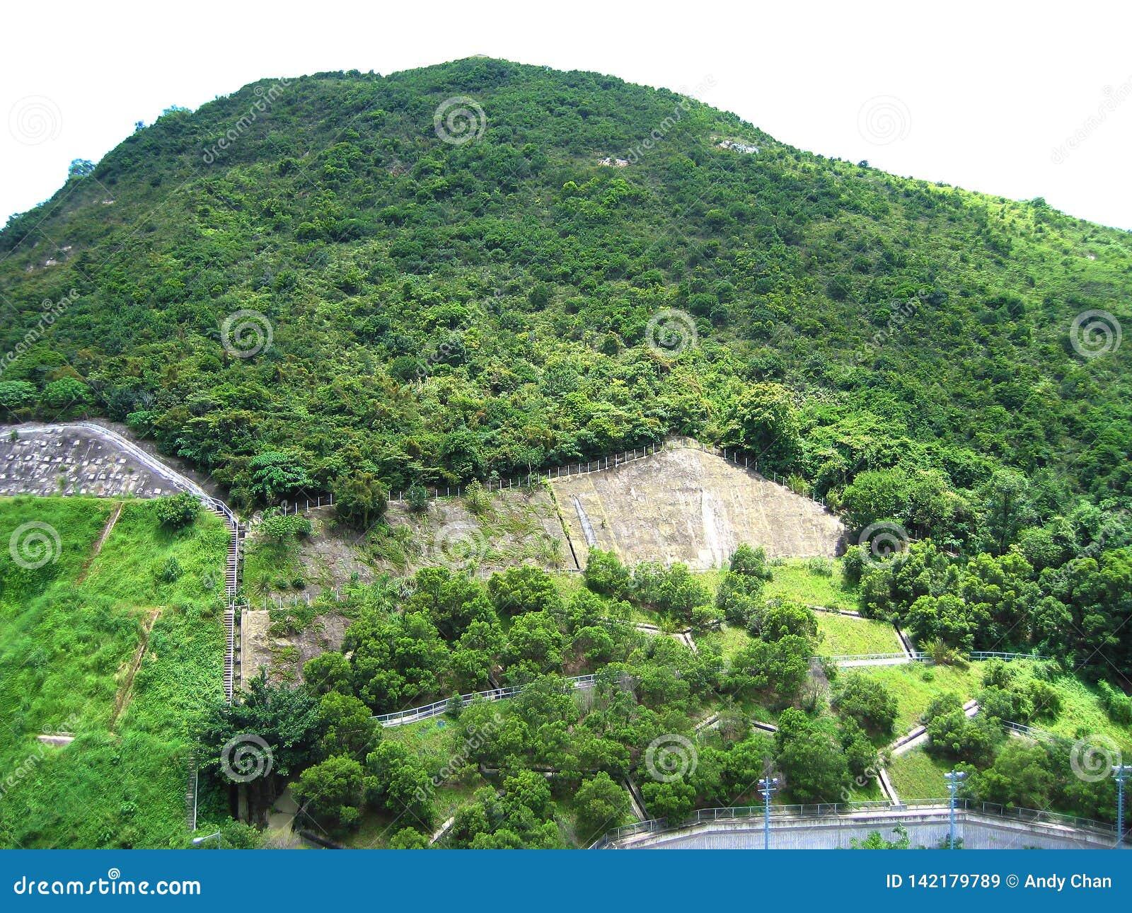 Πράσινα βουνά με τα πράσινα δέντρα στη κατοικήσιμη περιοχή στο Χονγκ Κονγκ