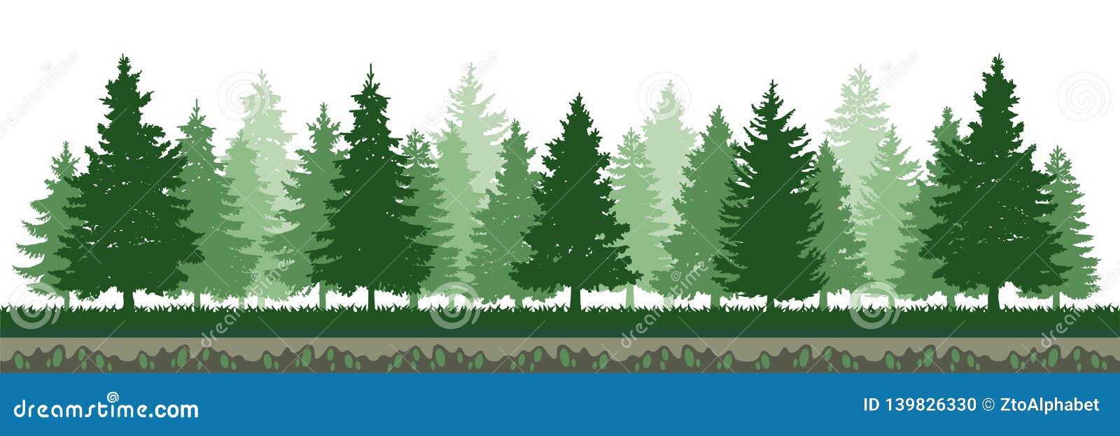 Πράσινο δασικό περιβάλλον δέντρων πεύκων