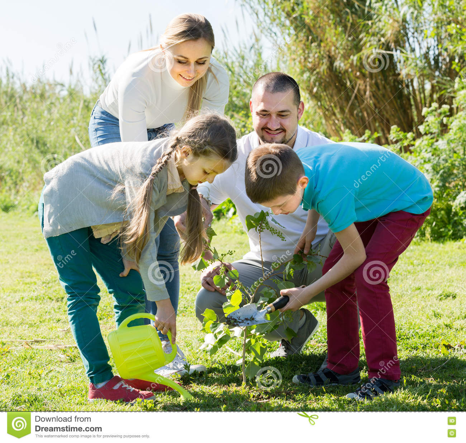 """ï"""" ¿ familj som utomhus planterar trädet"""