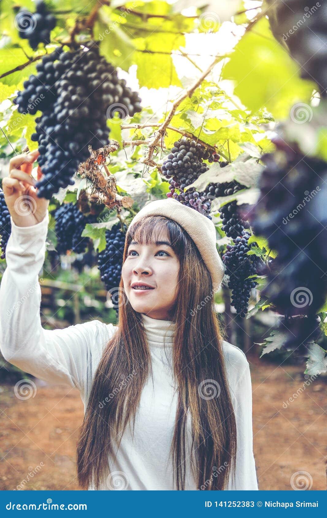 Азиатский winemaker женщины проверяя виноградины в винограднике