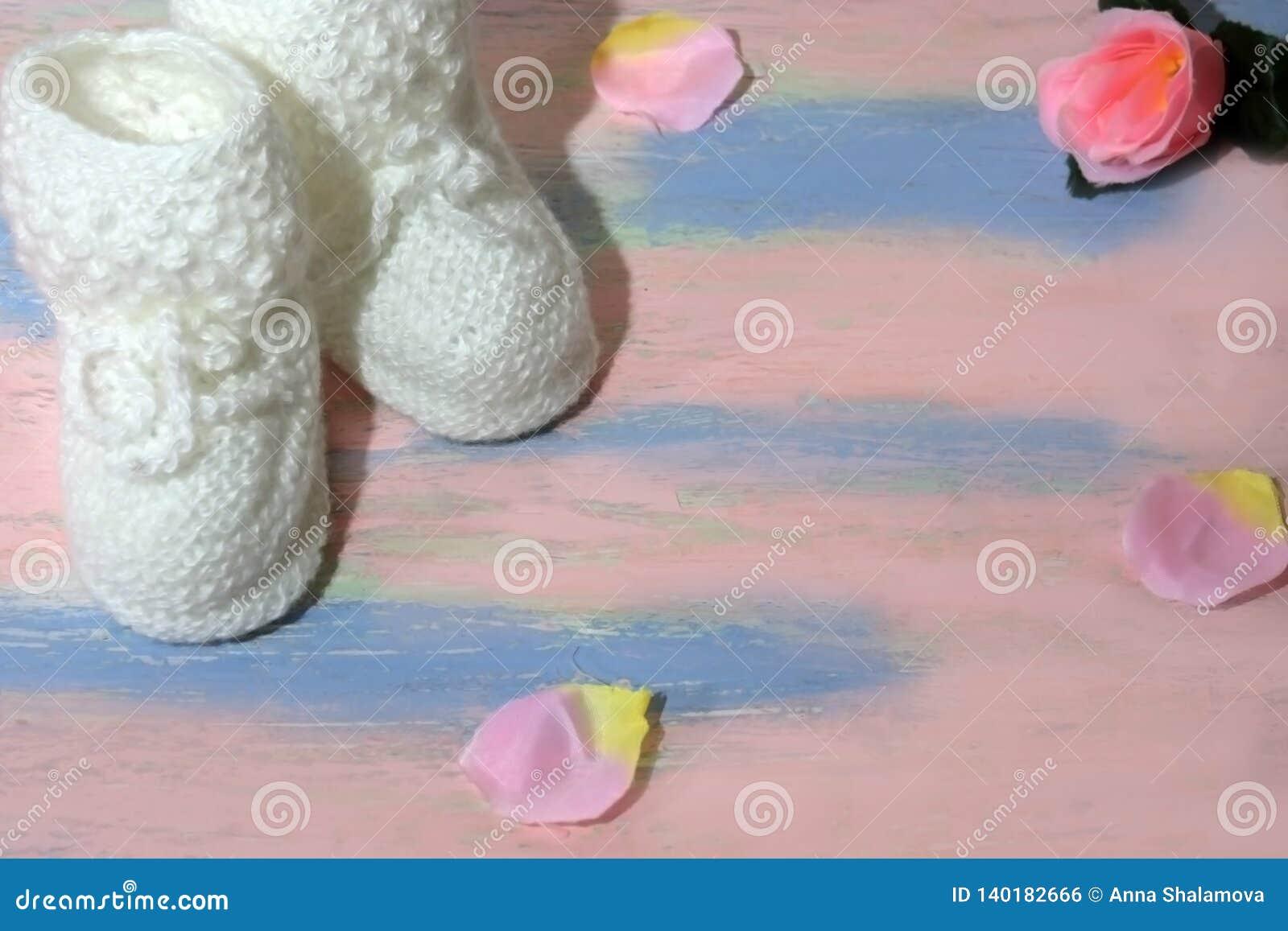 Белые связанные добычи ботинок младенца на розов-голубом деревянном столе с с лепестками розы Newborn концепция объявления