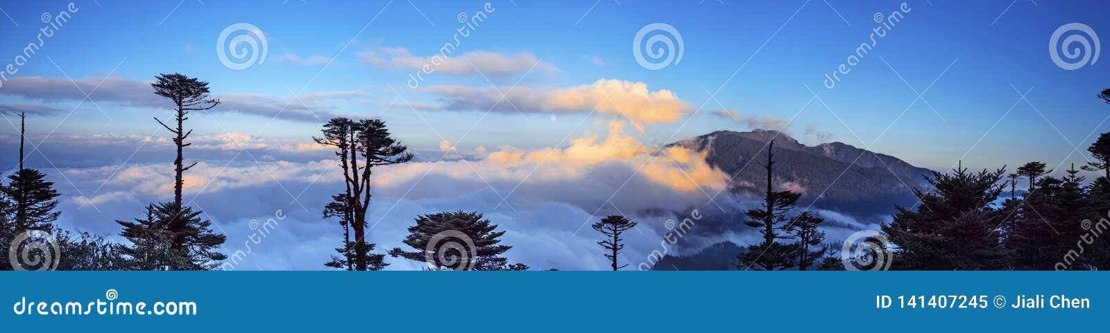 Большой взгляд моря облаков на Ла Thrumshing, перевал 3750m, восточный Бутан