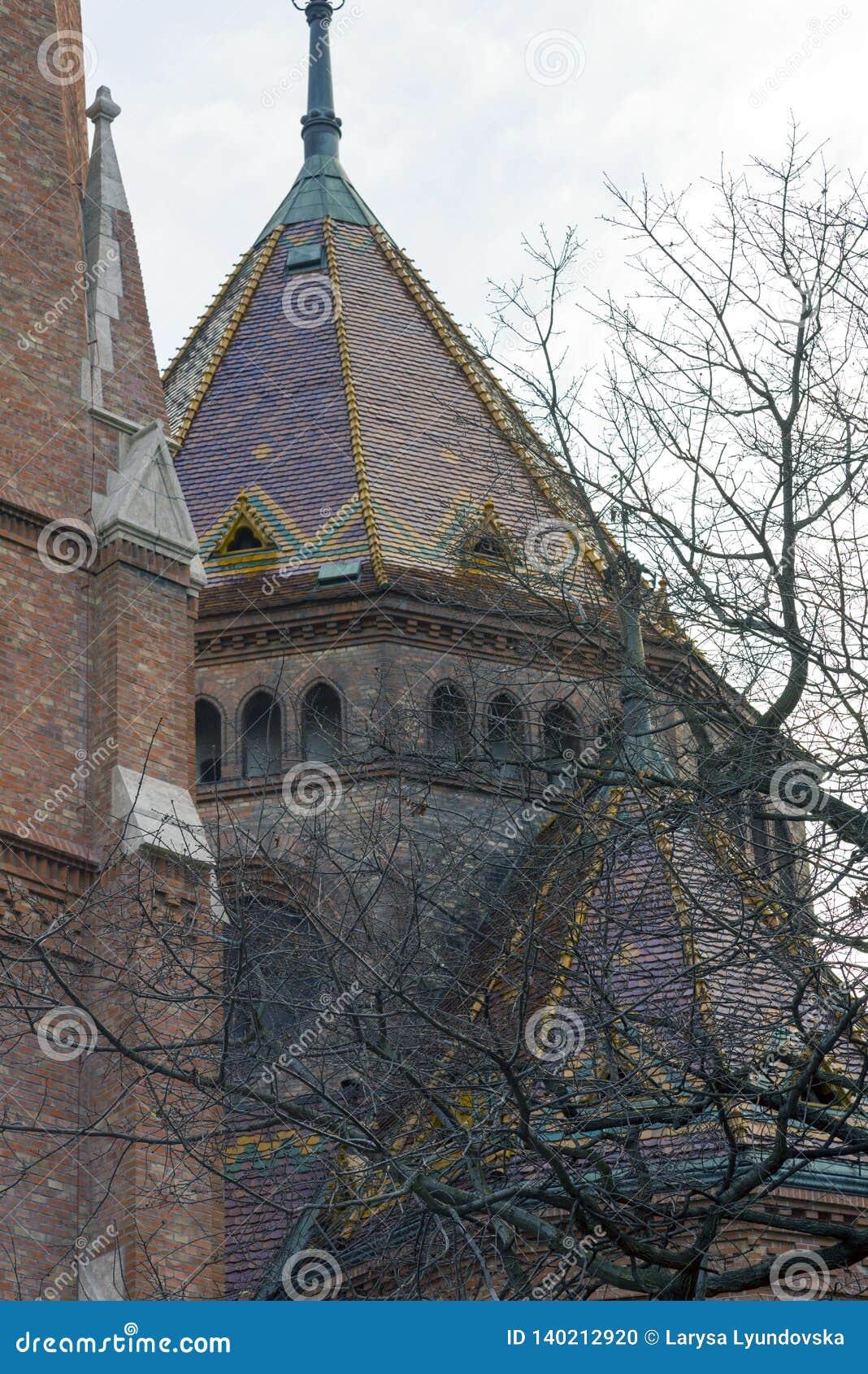Ветви дерева прячут архитектурноакустическую деталь исторического здания Будапешт, Венгрия в зиме