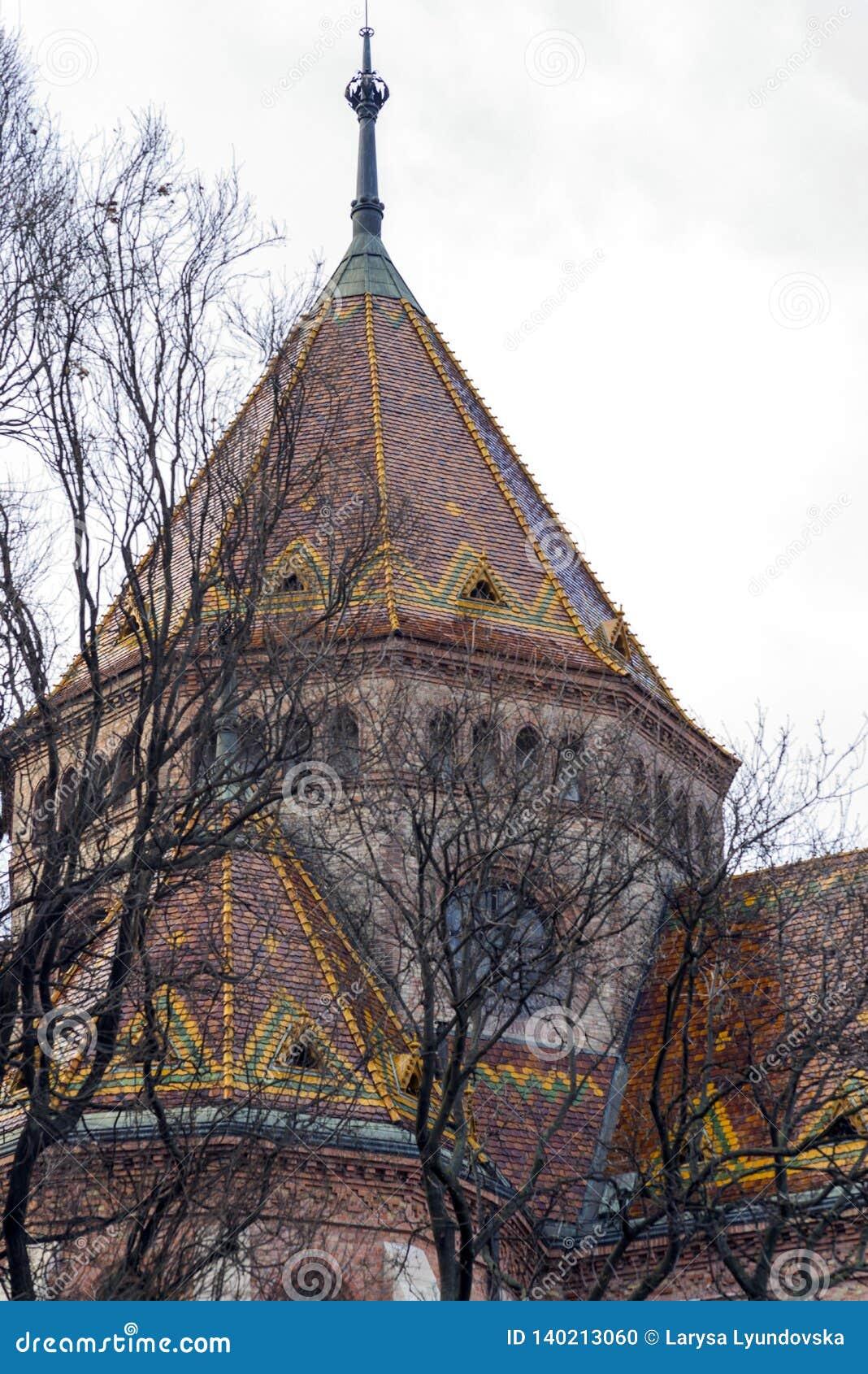 Ветви дерева прячут красочные крышу и купол исторического здания