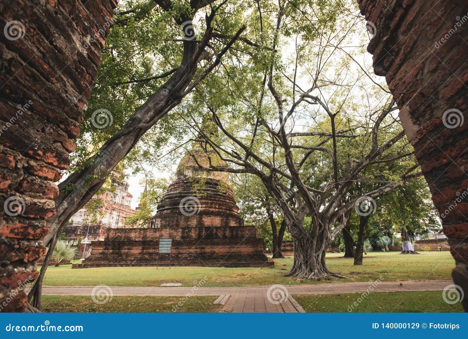 Висок Таиланда - старая пагода на Wat Yai Chai Mongkhon, парке Ayutthaya историческом, Таиланде