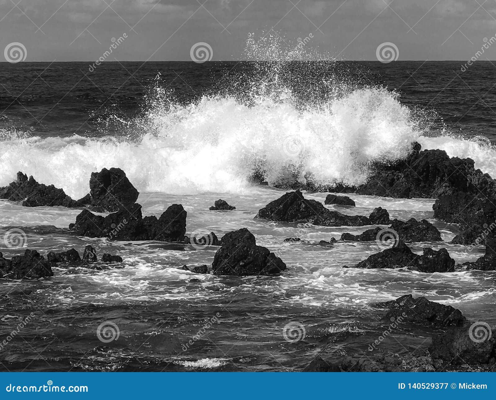 Волны на пляже Мауи утесов черно-белом