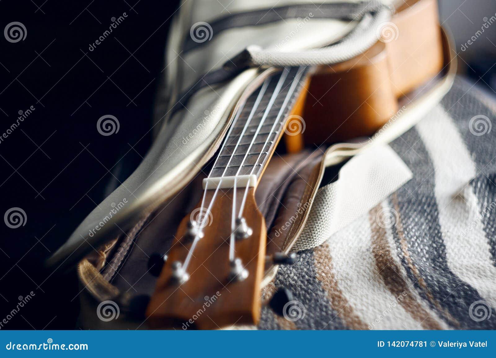 Гавайская гитара со строками нейлона на открытом случае