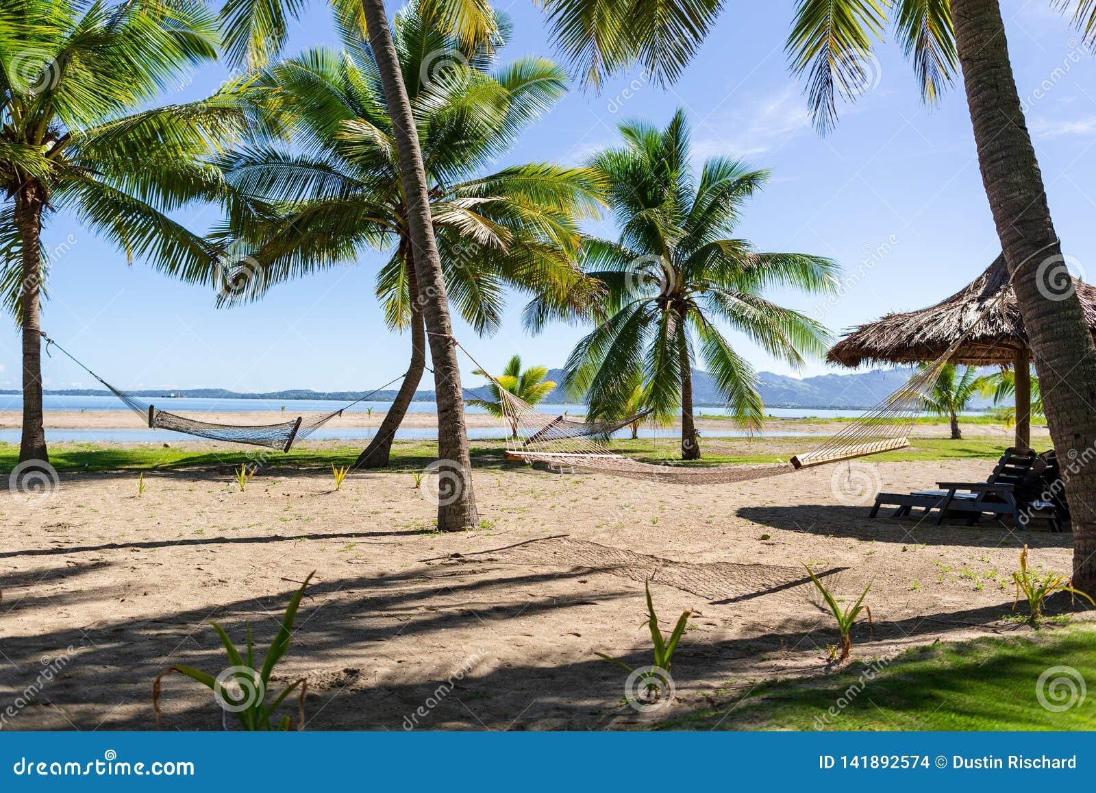 Гамаки на посетителях пляжа Фиджи ждать, который нужно ослабить на их
