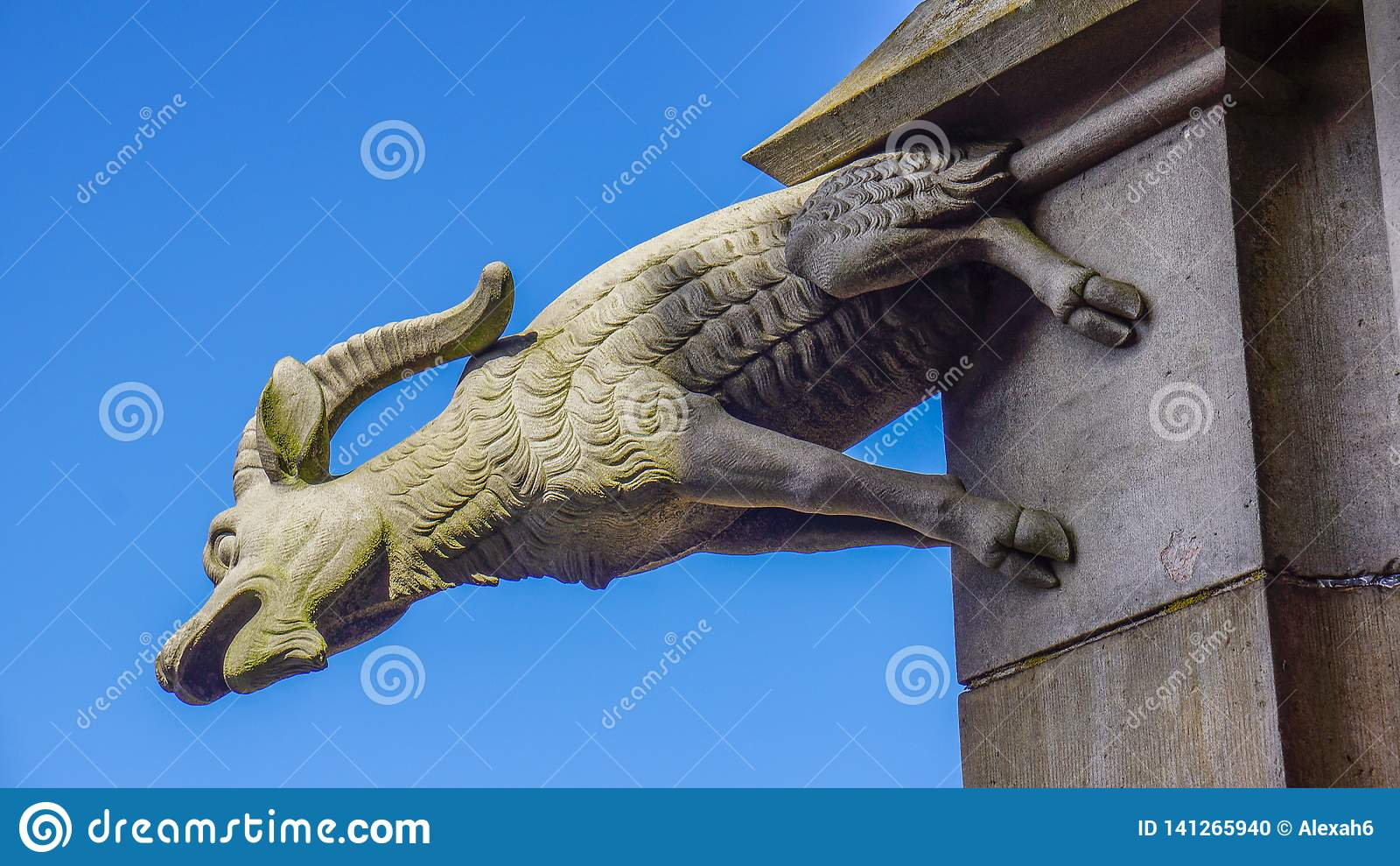 Горгулья козы монастырской церкви ulm