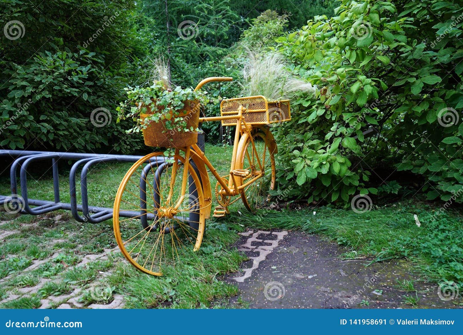 Желтый старый велосипед в парке с цветочными горшками