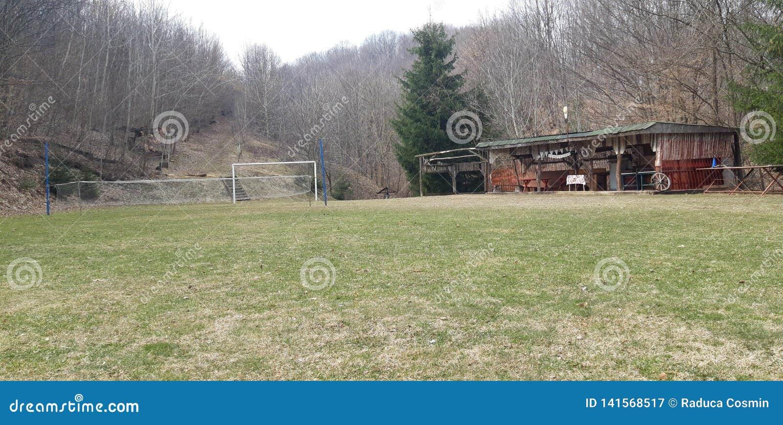 Зеленое поле футбола и волейбола