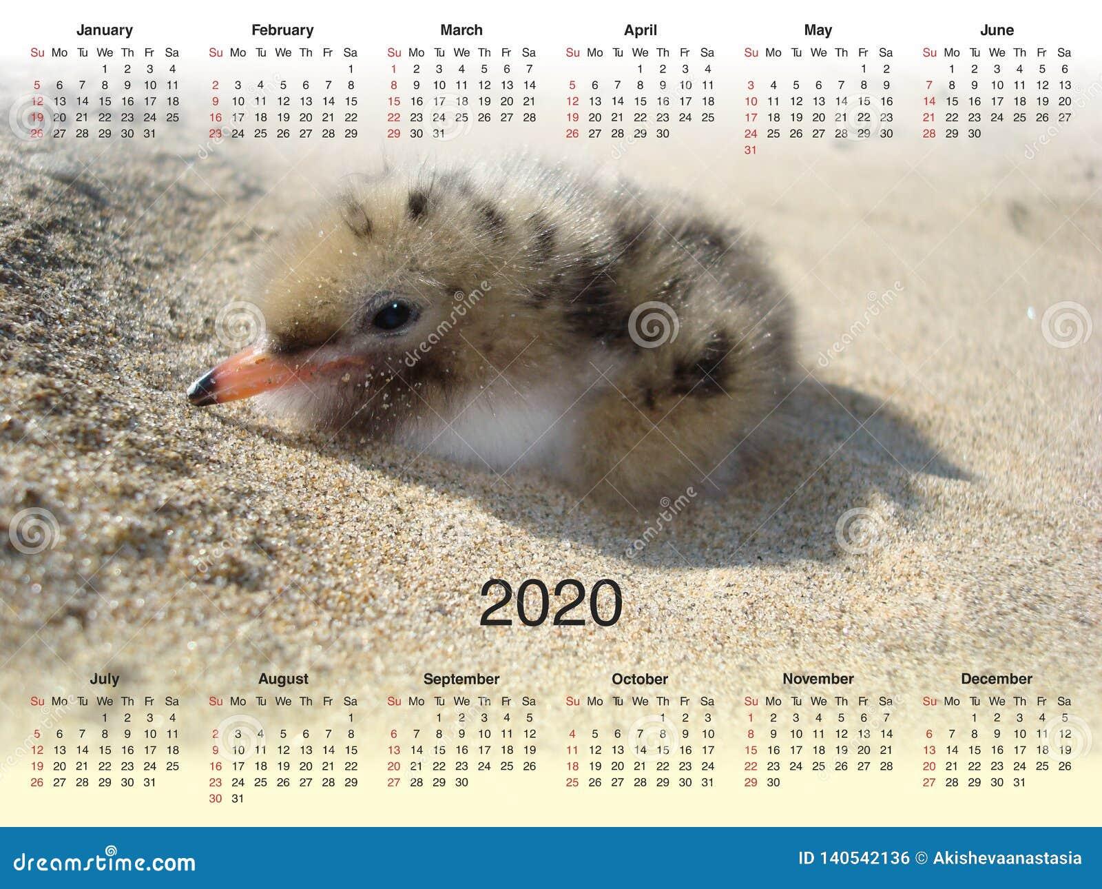 Календарь на 2020