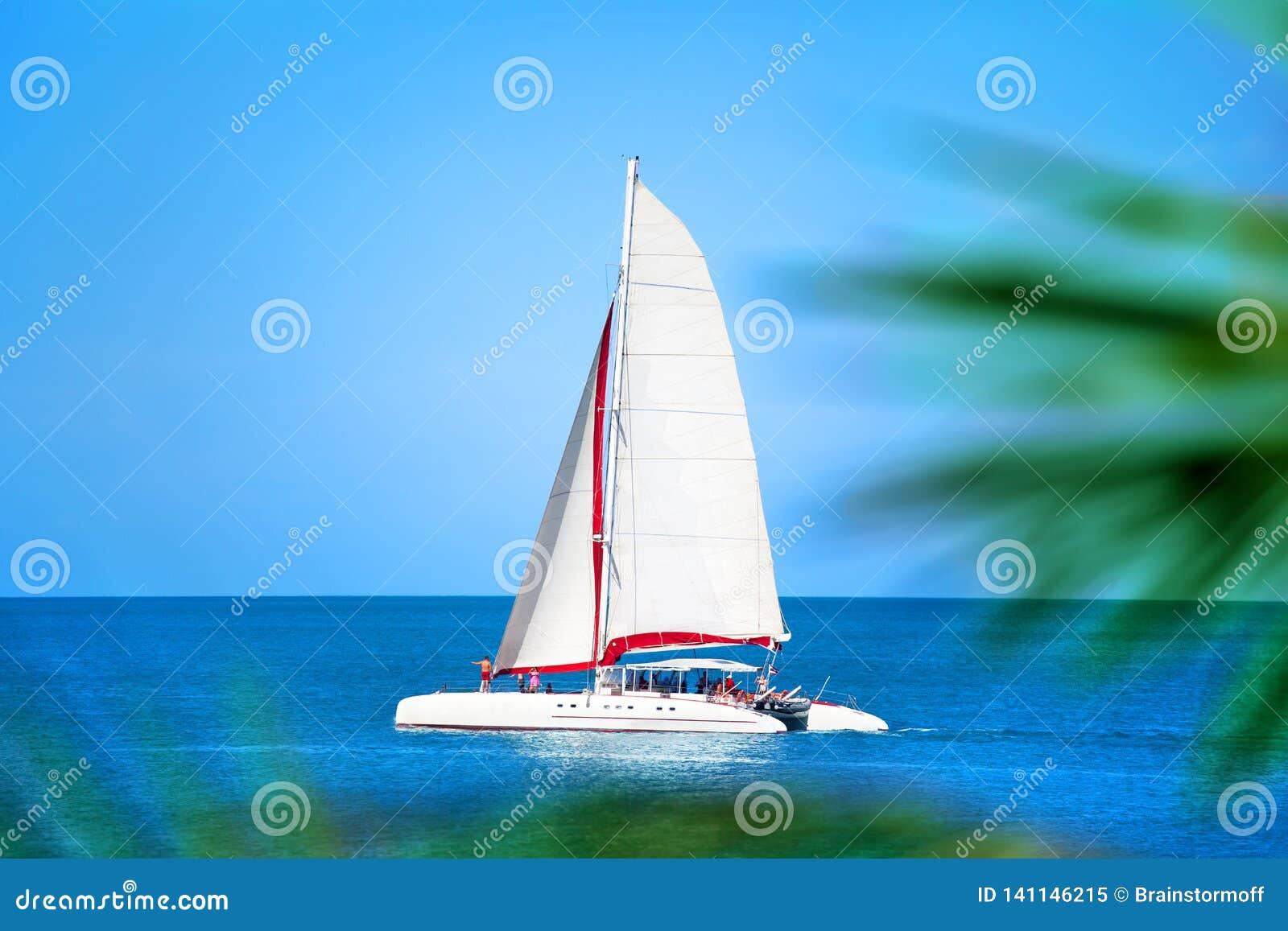 Катамаран с белым ветрилом в голубом море, ветвях предпосылке ладони, людях ослабляет на шлюпке, отключении моря летних каникулов