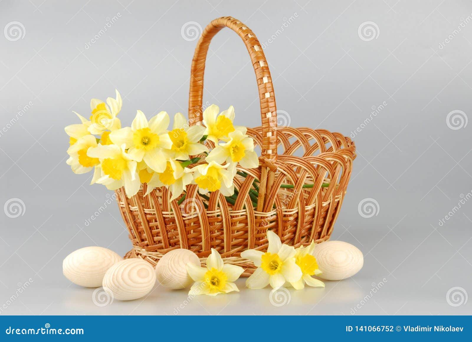 Корзина Narcissus, пасхальные яйца в корзине, женщины цветка narcissus весны желтые или день матерей