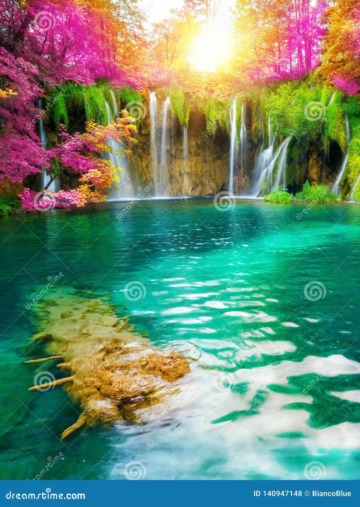 Ландшафт водопада озер Хорватии Plitvice