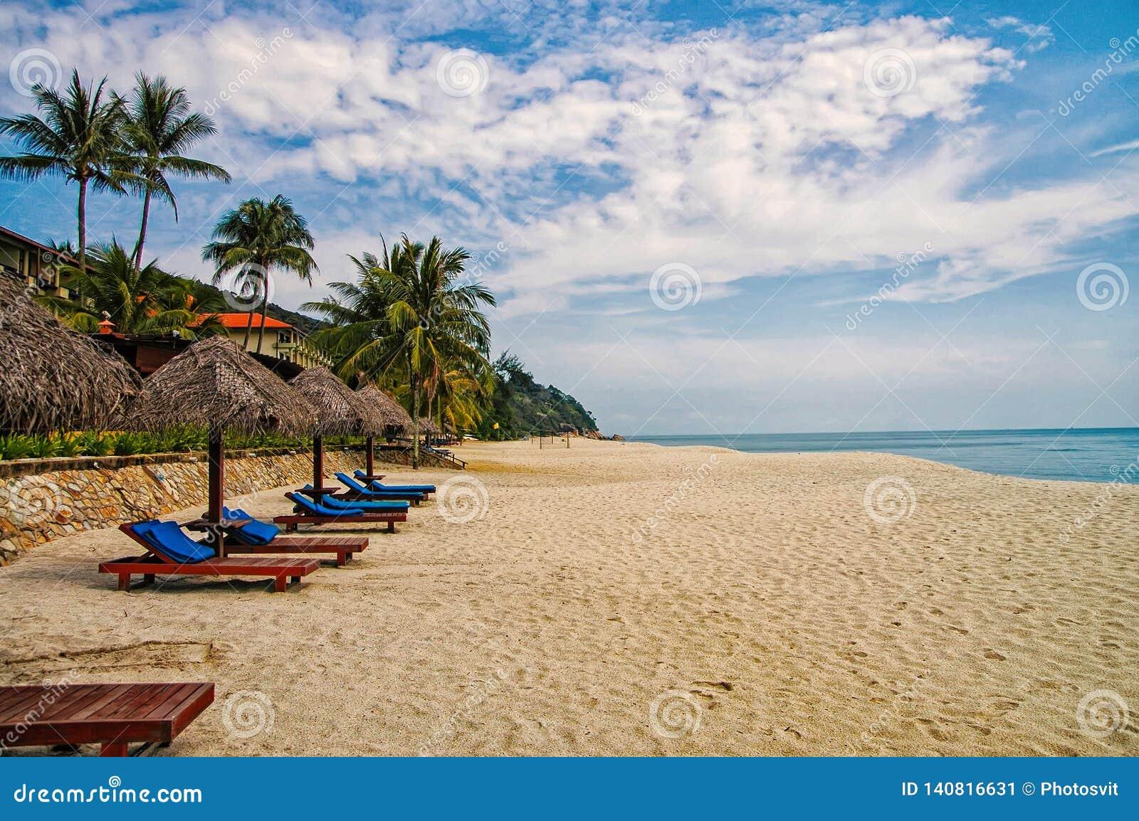 Ладони и sunbeds песка троповые Самые лучшие пляжные комплексы Kuantan Роскошные каникулы на кристалле - чистых водах и древних п
