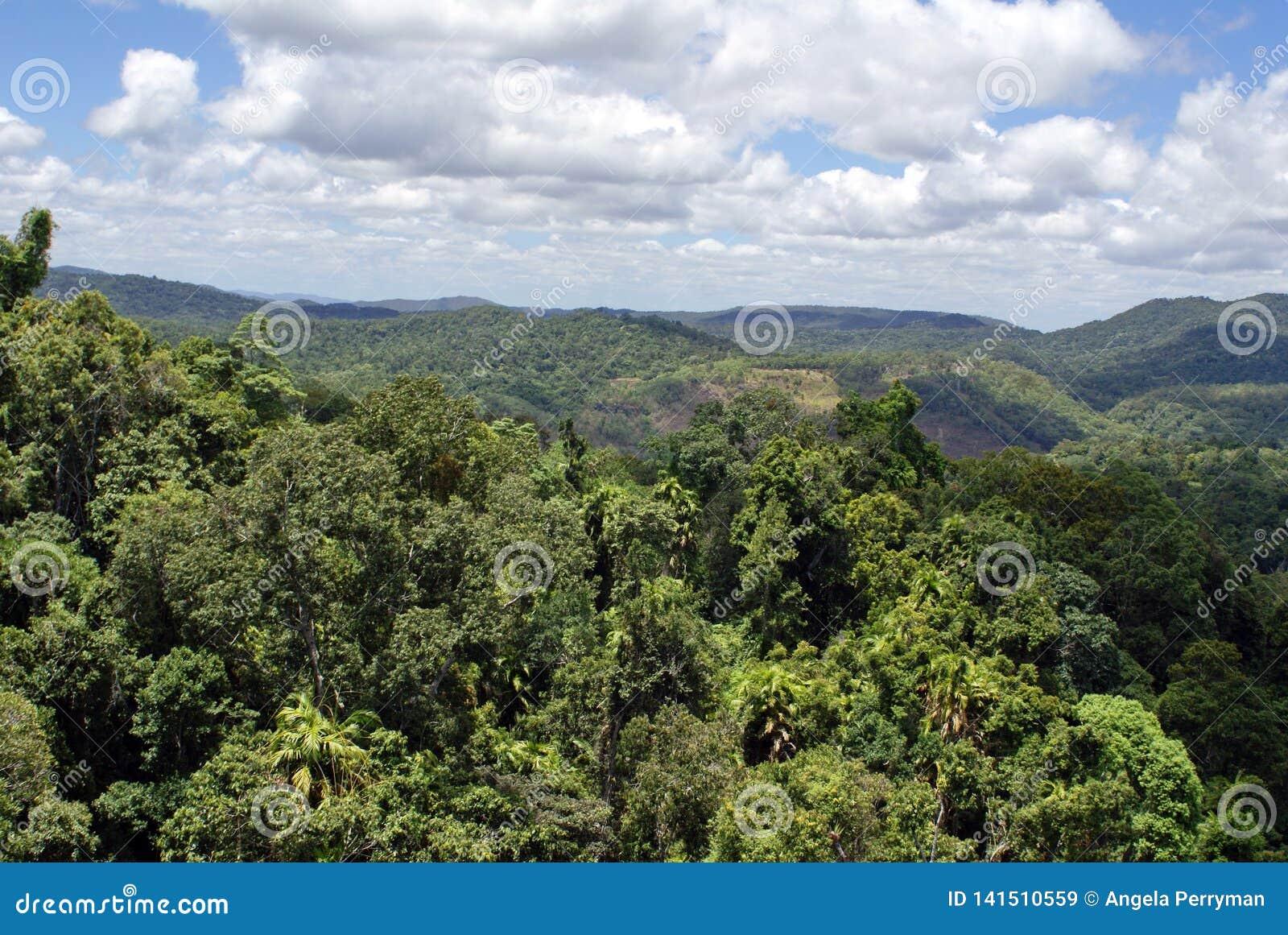 Национальный парк ущелья Barron