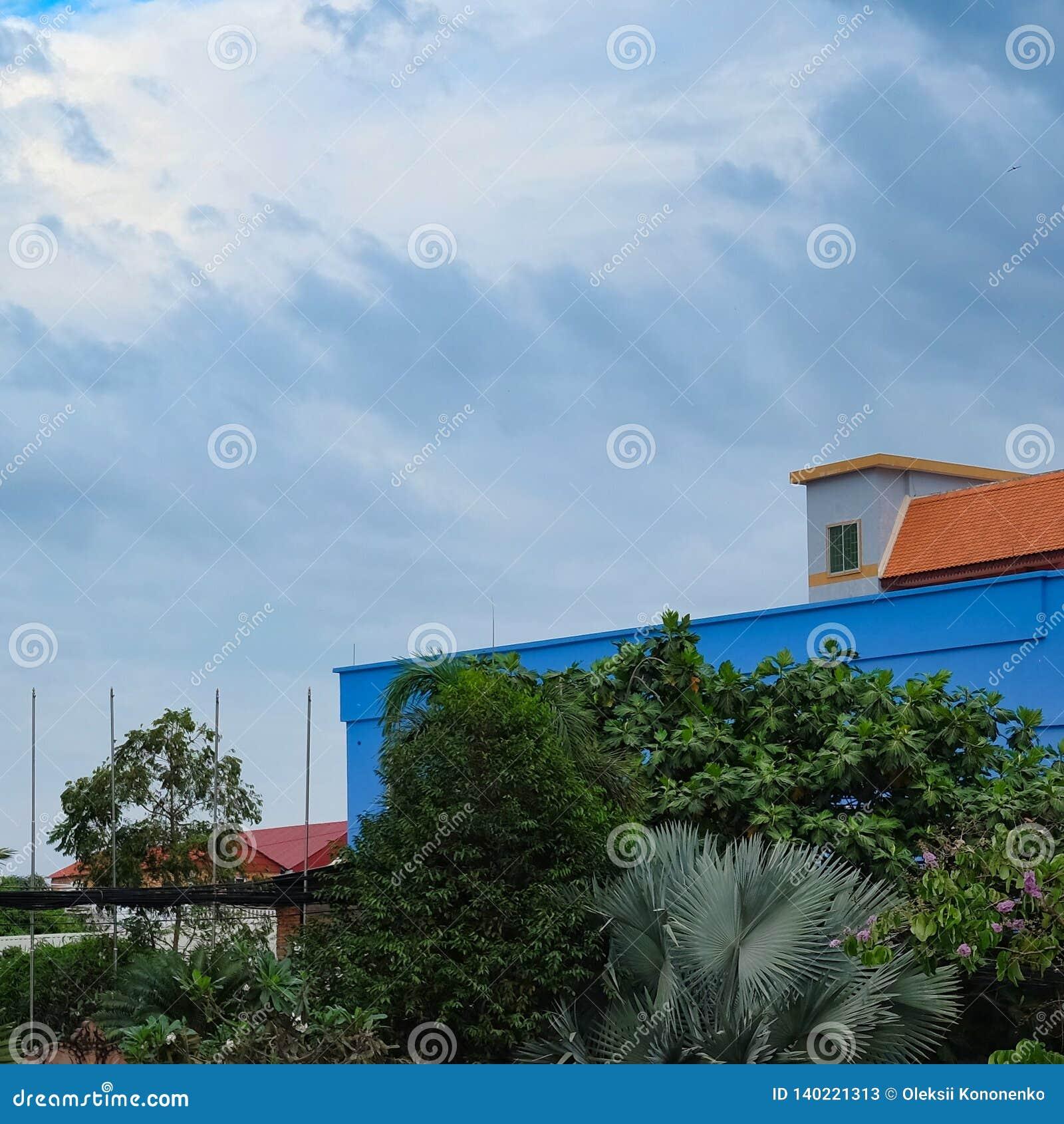 Пасмурная погода и облачное небо, деревья