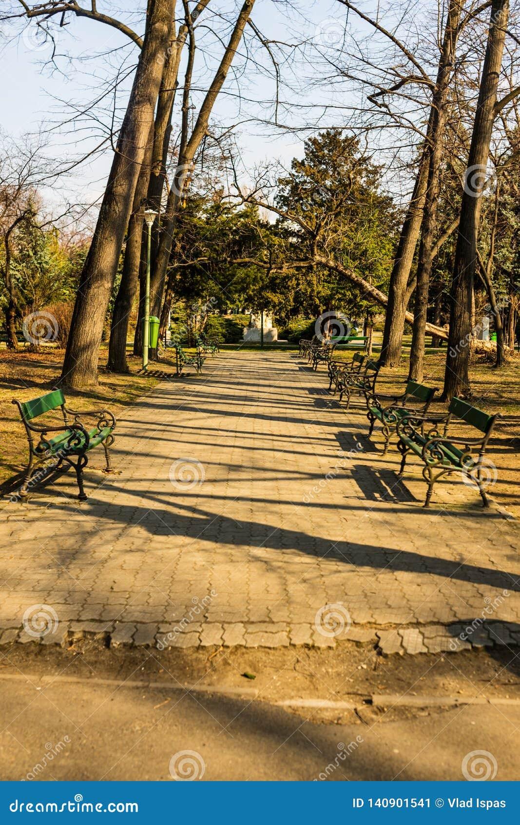 Парк Кэрола в Бухаресте, Румынии переулок пустой