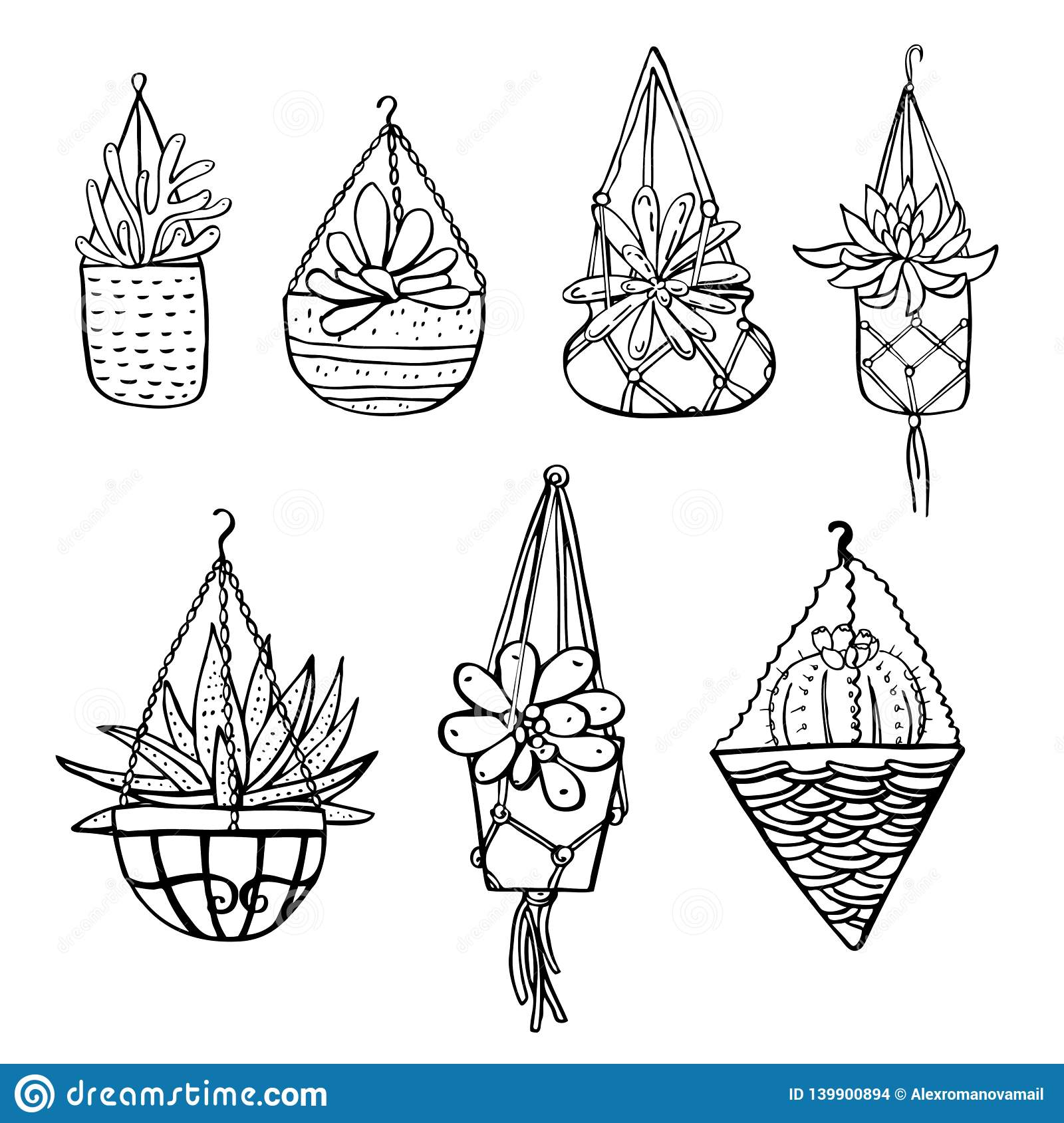 Cactus And Succulent Plants In Hanging Flowerpots Vector Hand Drawn Outline Black And White Sketch Illustration Stock Vector Illustration Of Exotic Drawing 139900894