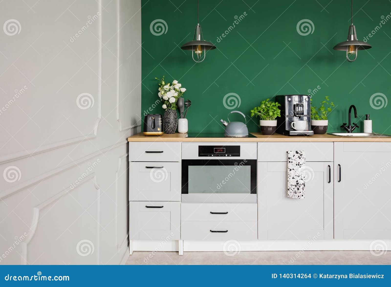 Пустая зеленая стена с космосом экземпляра в элегантной кухне с белыми мебелью, заводами и машиной кофе