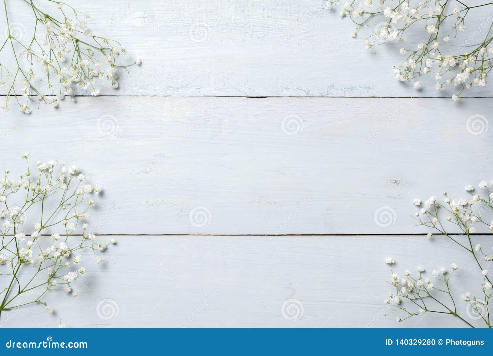 Предпосылка весны, рамка цветков на голубом деревянном столе Модель-макет знамени на день женщины или матерей, пасха, праздники в