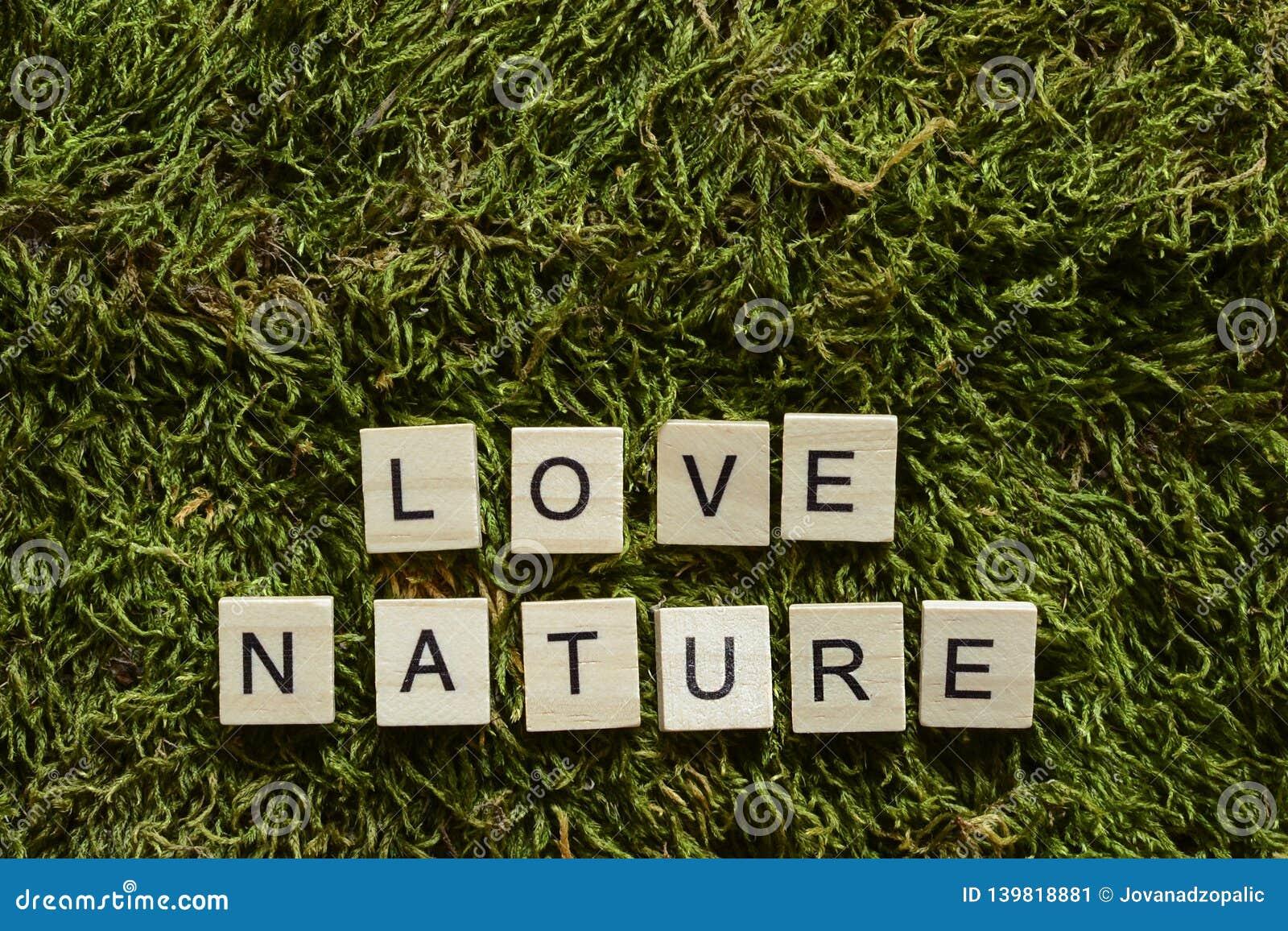Природа любов написанная с деревянными письмами cubed форма на зеленой траве