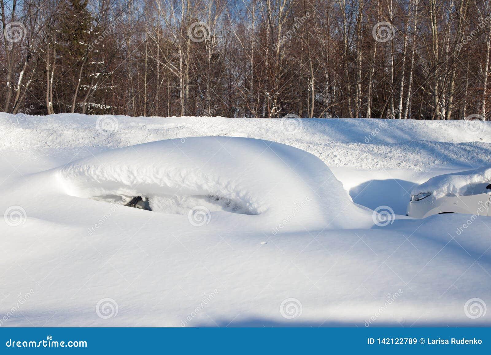 покрытые Снег автомобили на парковке, шторме снега в России Общие назначения удаления снега