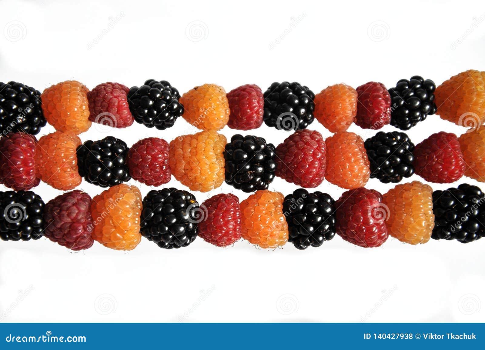 Поленики ягод черные, желтые и зеленые на белизне
