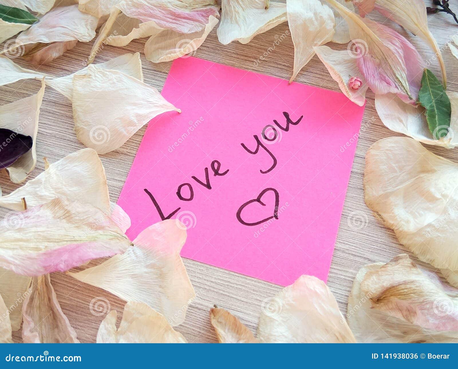 Полюбите вас сообщение на розовом липком примечании с сухими лепестками цветка розы и орхидеи на предпосылке деревянного стола