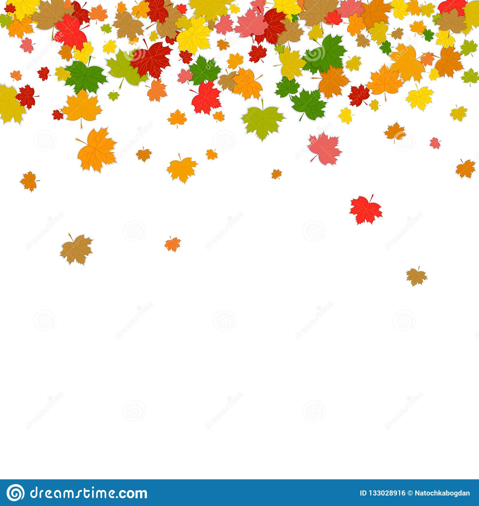 Ð ¡ olorful spada liście Liście klonowi odizolowywający na białym backgro