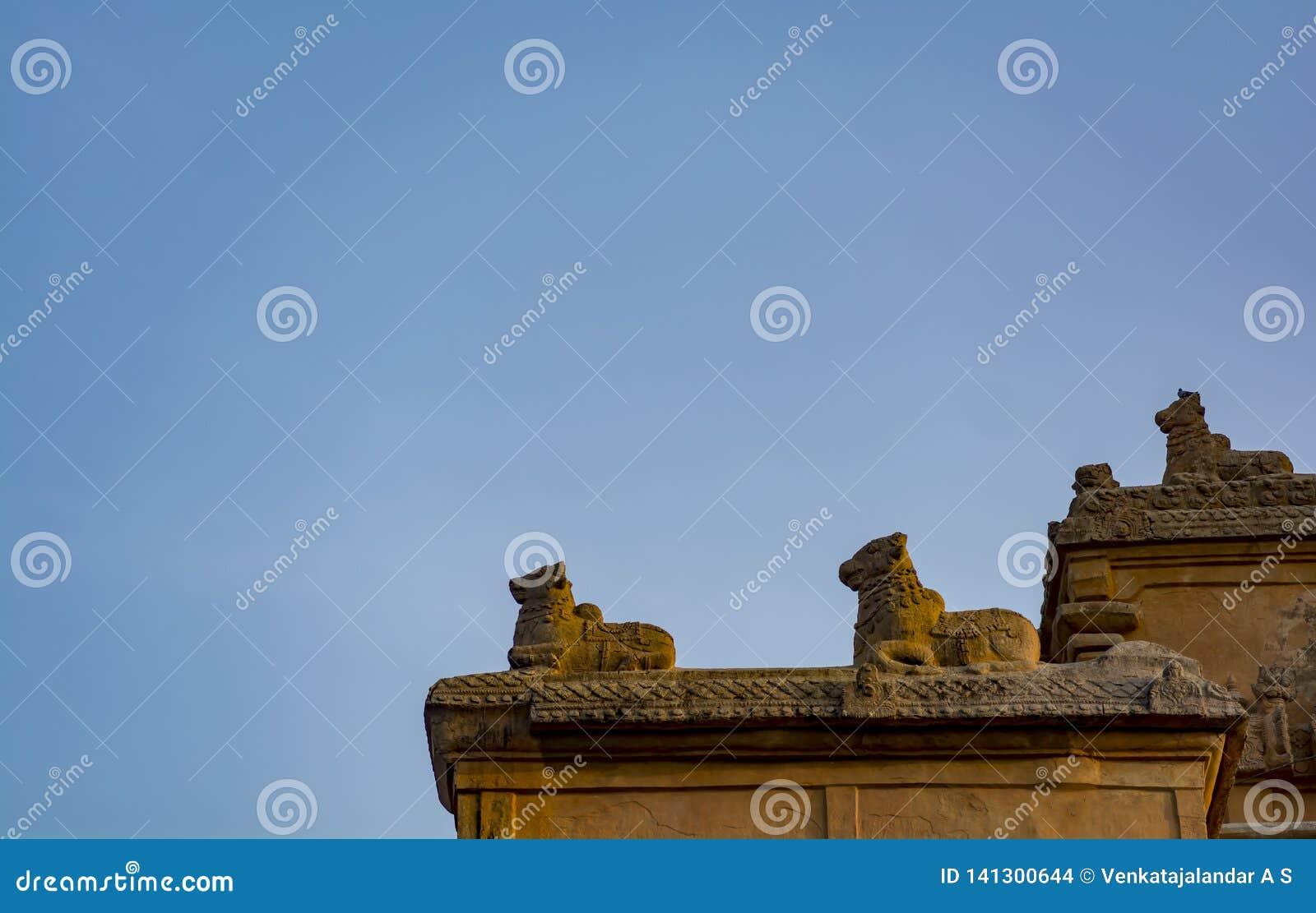 Скульптура виска Tanjore большая - Nandi