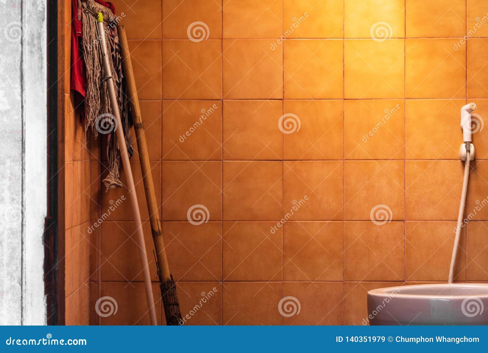 Старая предпосылка bathroom с очищая оборудованием Пакостная ванная комната