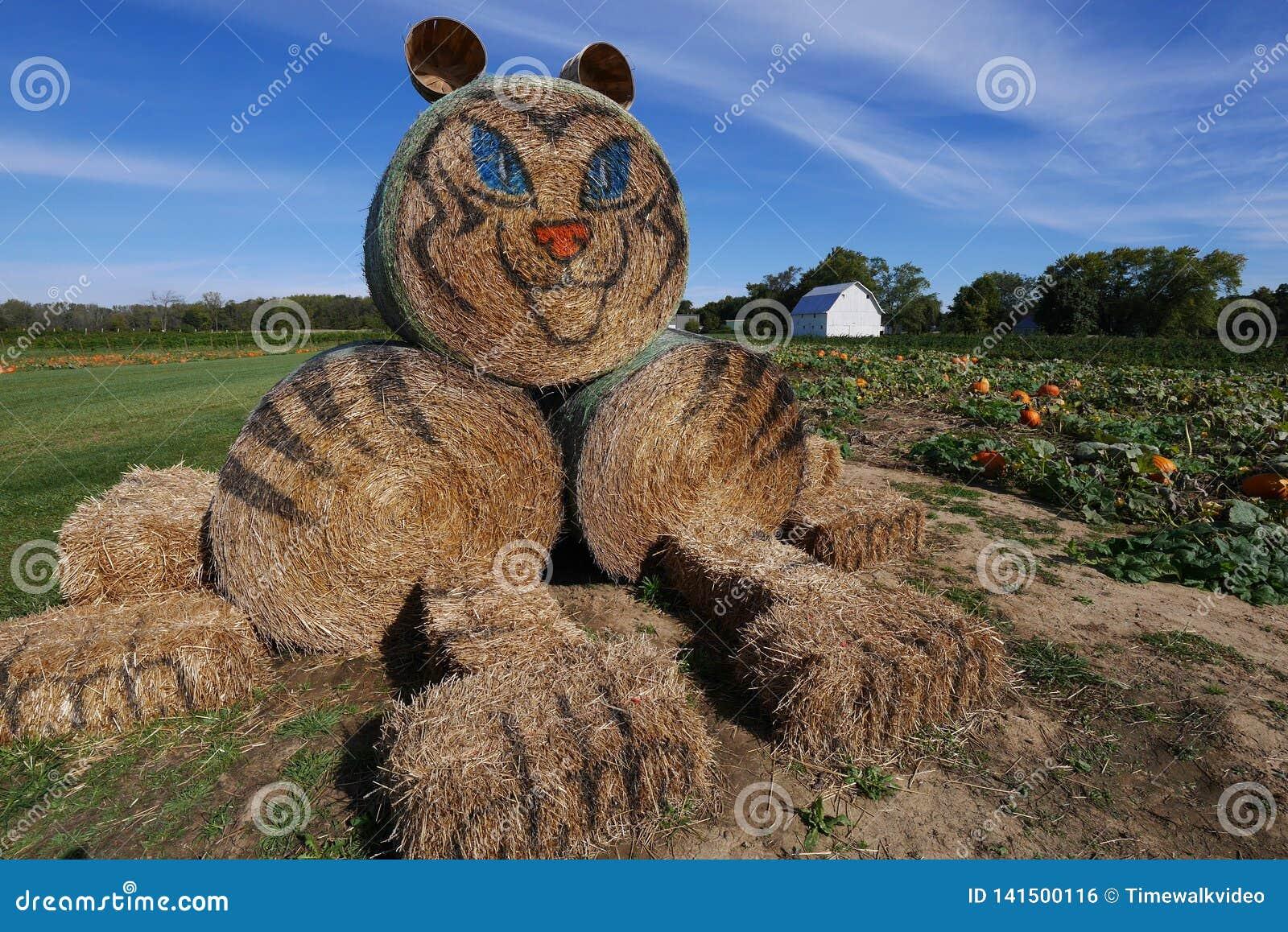 Стога сена тигра - день на ферме