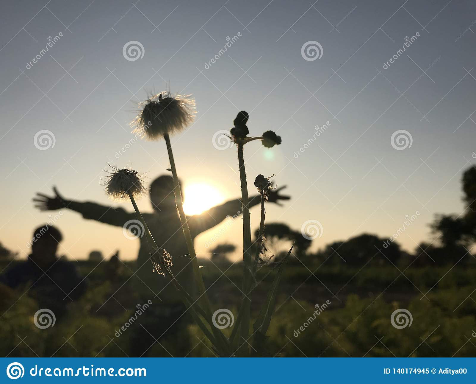 Стойка мальчика под тенью цветка