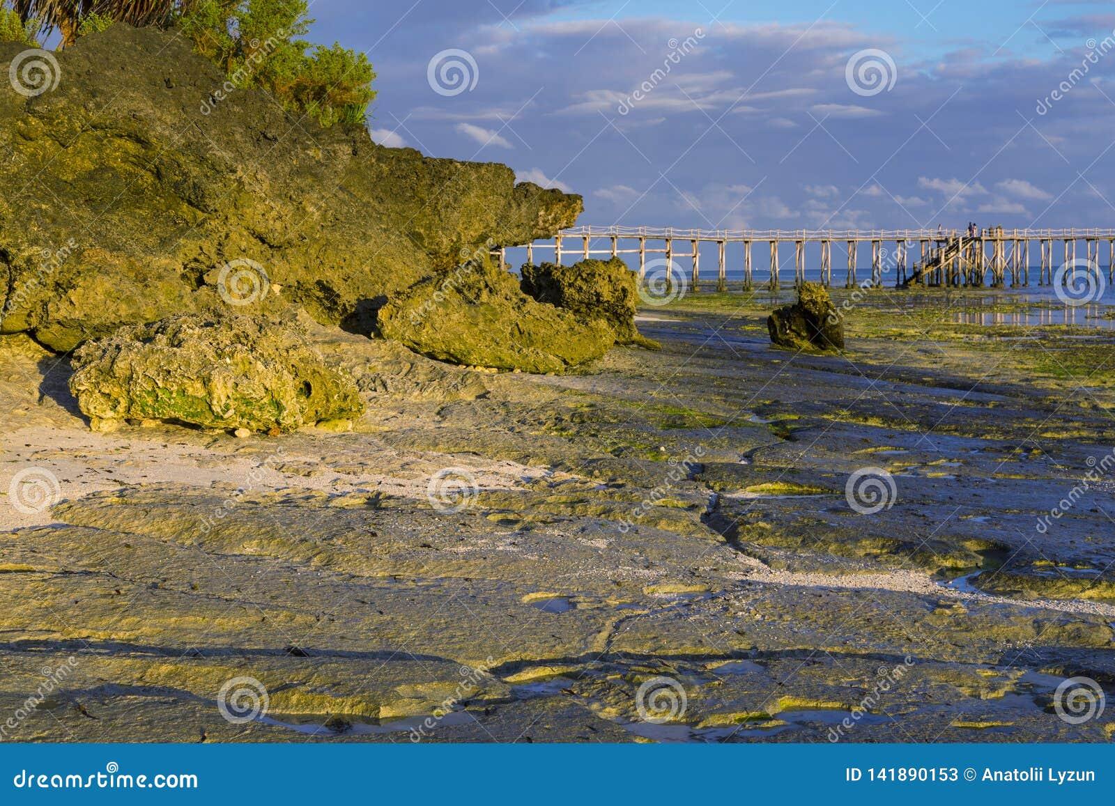 Утро на острове Занзибара побережья океана