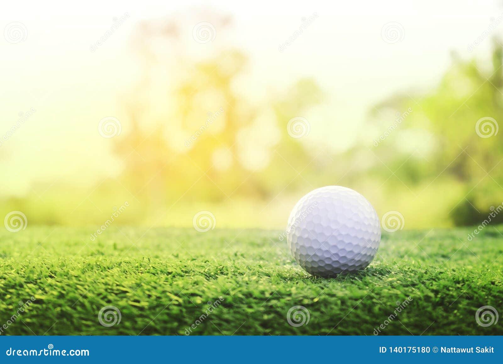 Шар для игры в гольф на зеленой лужайке в красивом поле для гольфа