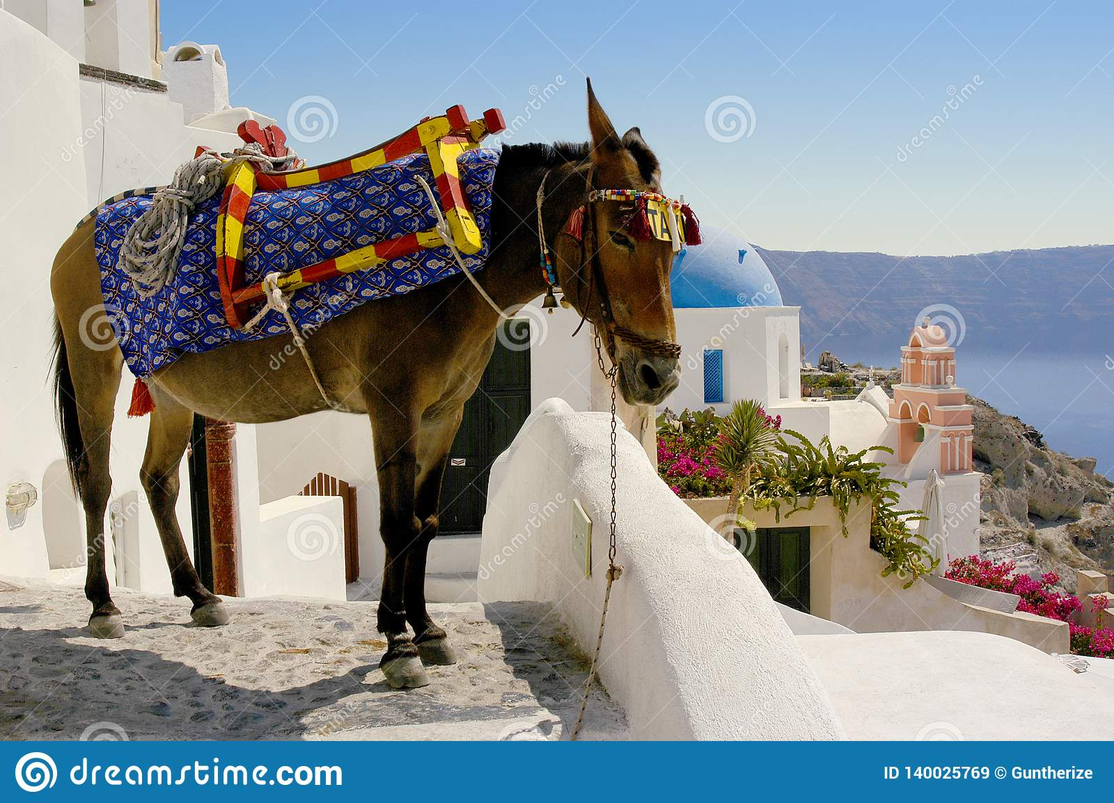 Такси осла через улицы Oia на острове Santorini, Греции