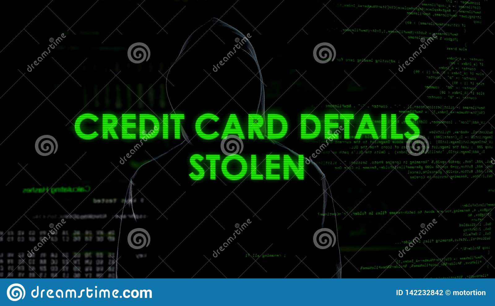 Финансовый хакер крадя детали кредитной карточки, блок счета в банк, потерю денег