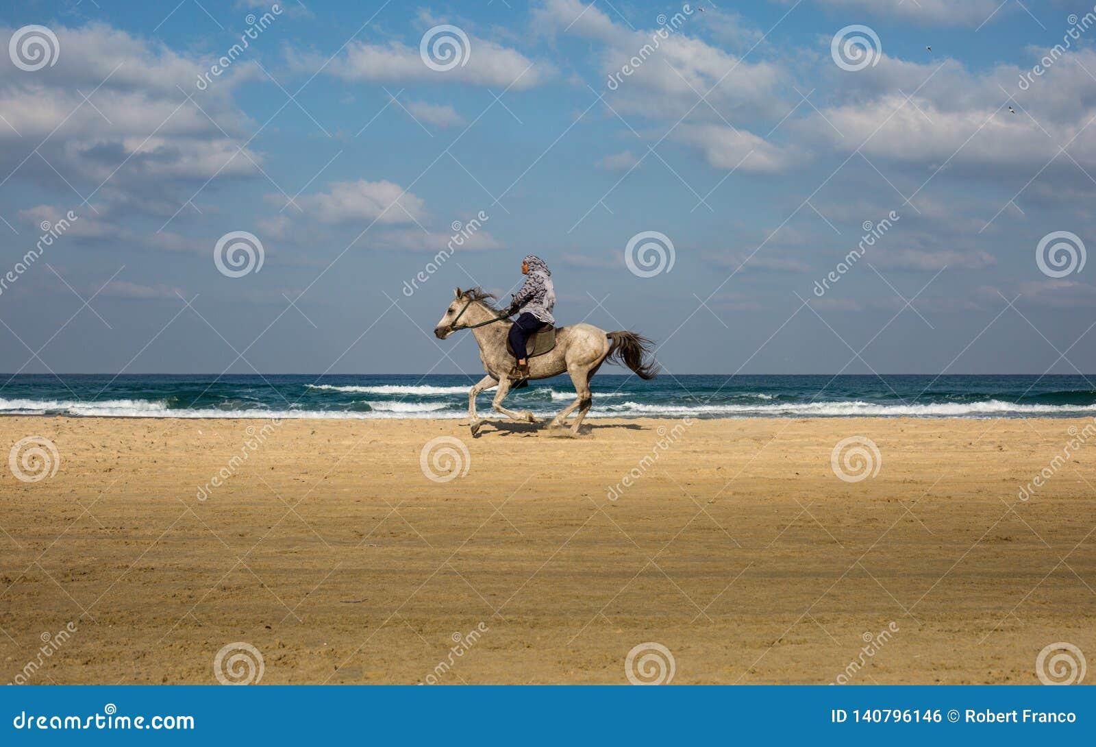 Человек ехать лошадь на пляже
