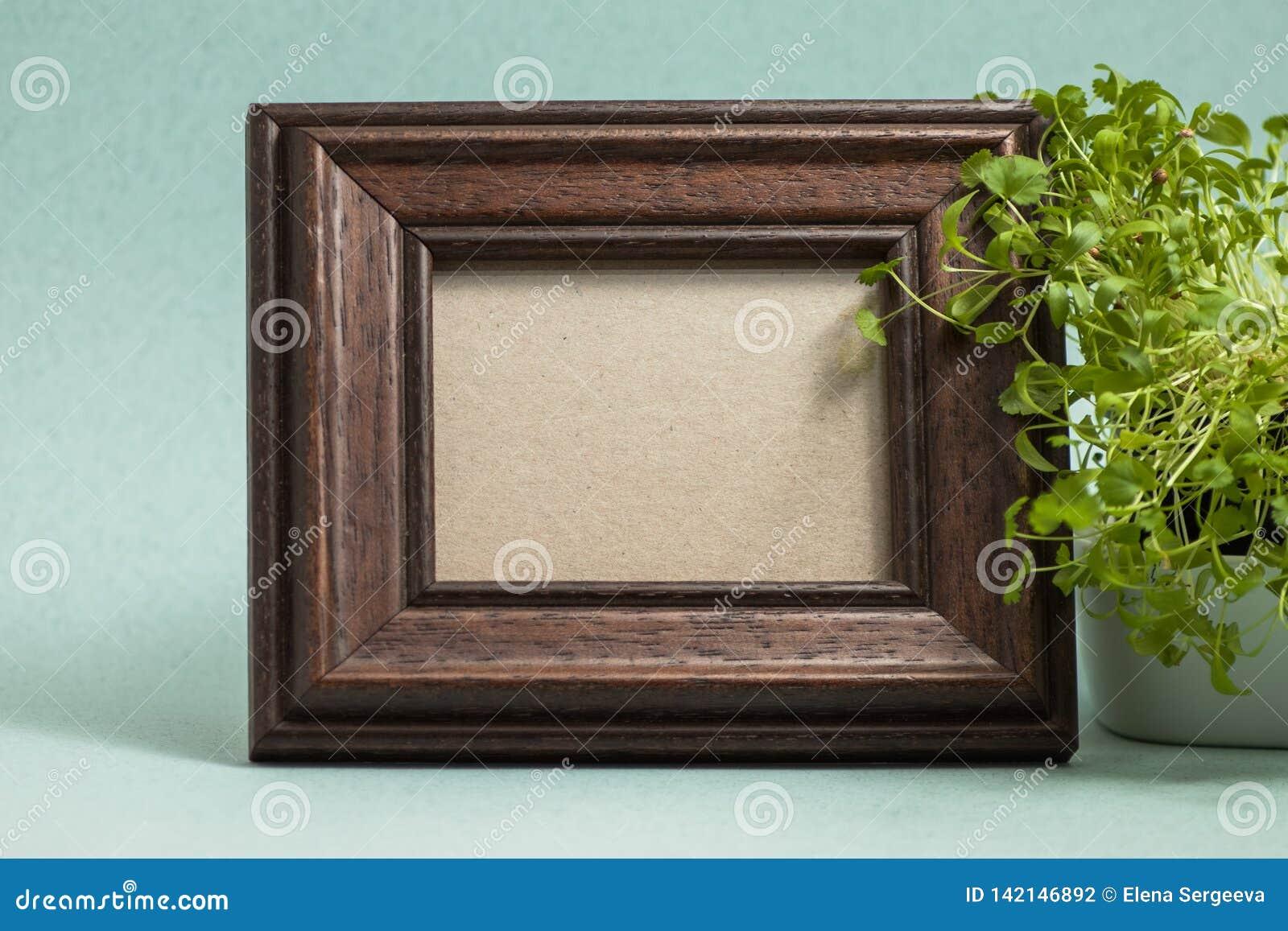 Рамка фото Брауна с заводом