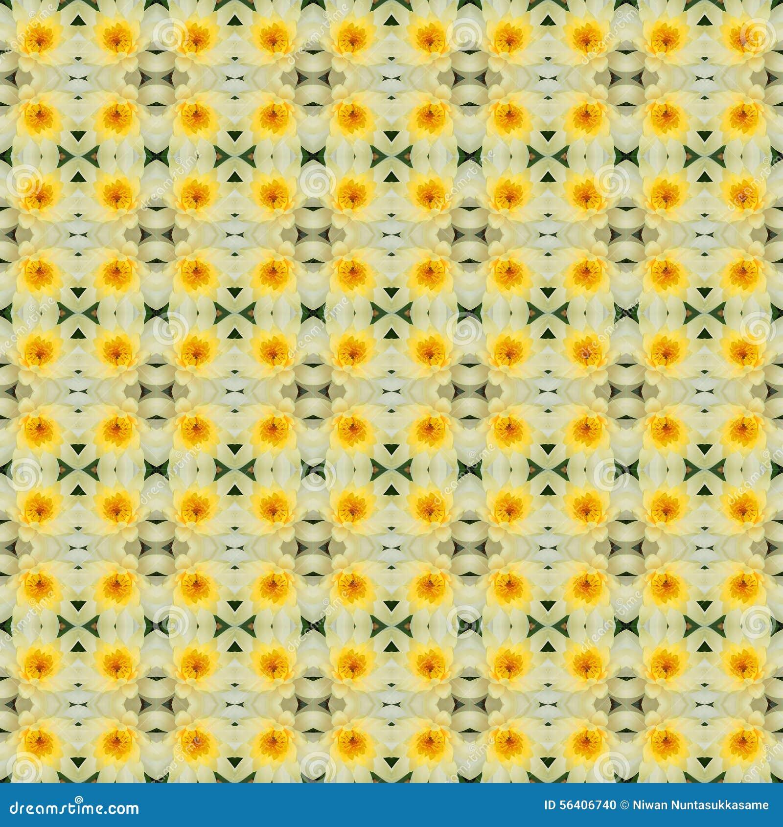 Żółty lotosowy kwiat w pełnym kwiacie bezszwowym